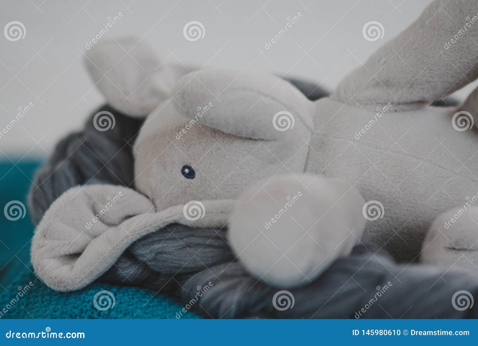 Angef?llter Elefant