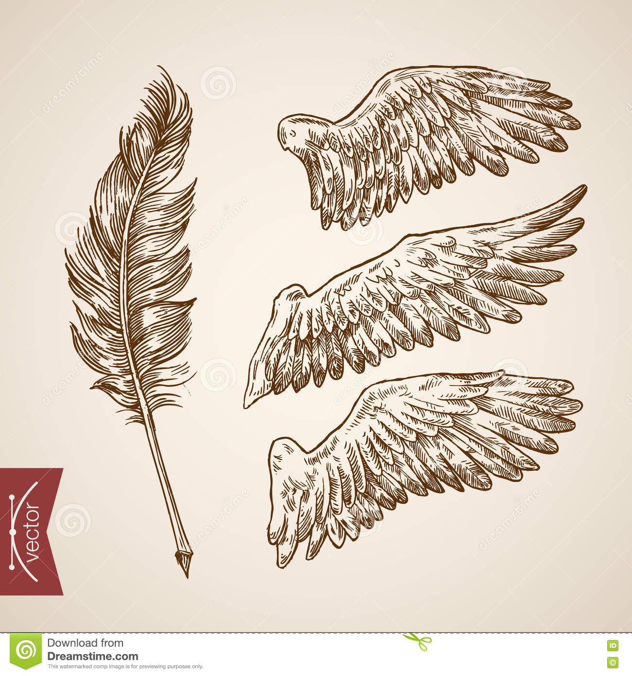 Angel Bird Wings Feather Template Engraving Retro Vintage