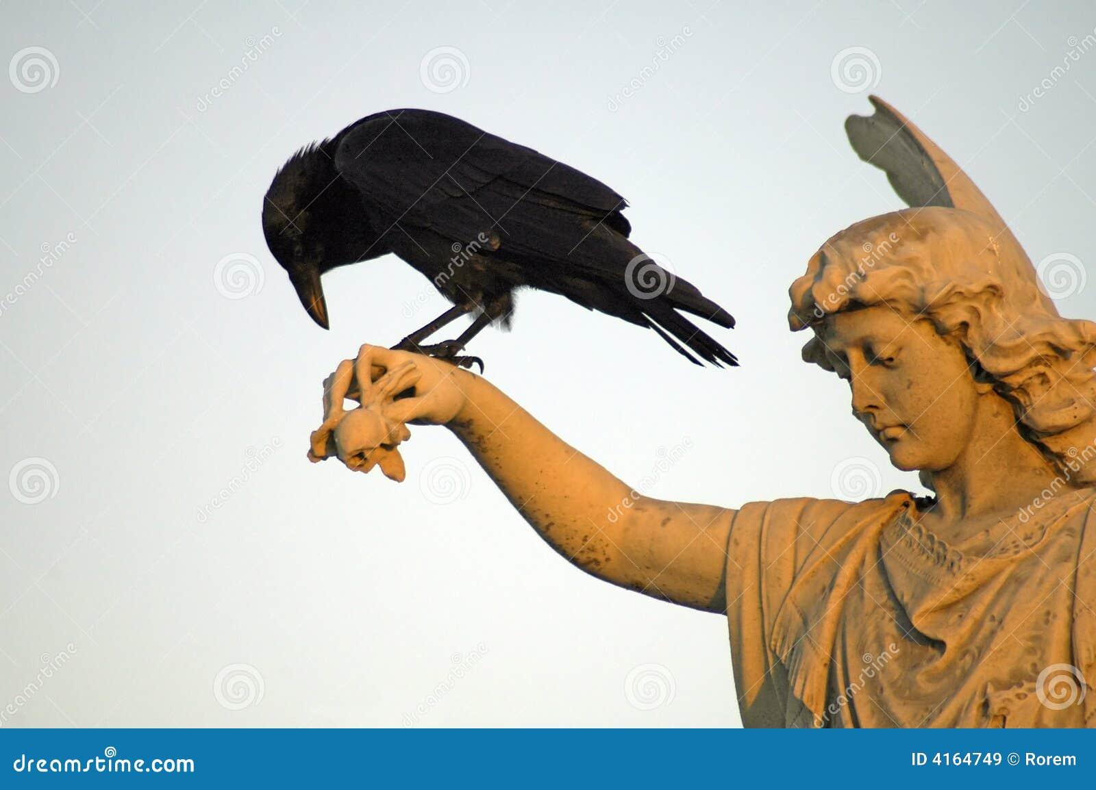 Angel and crow