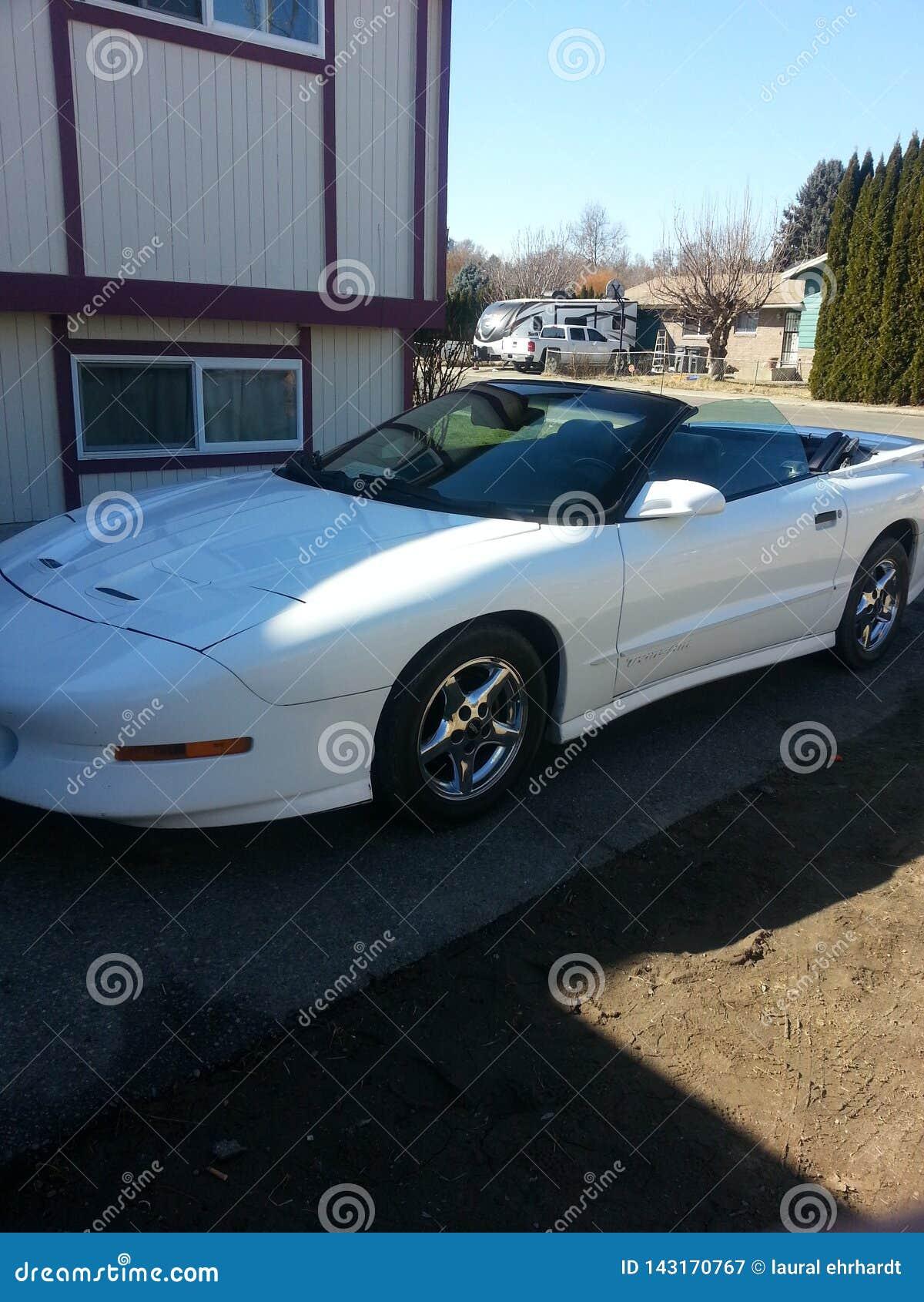 car in white