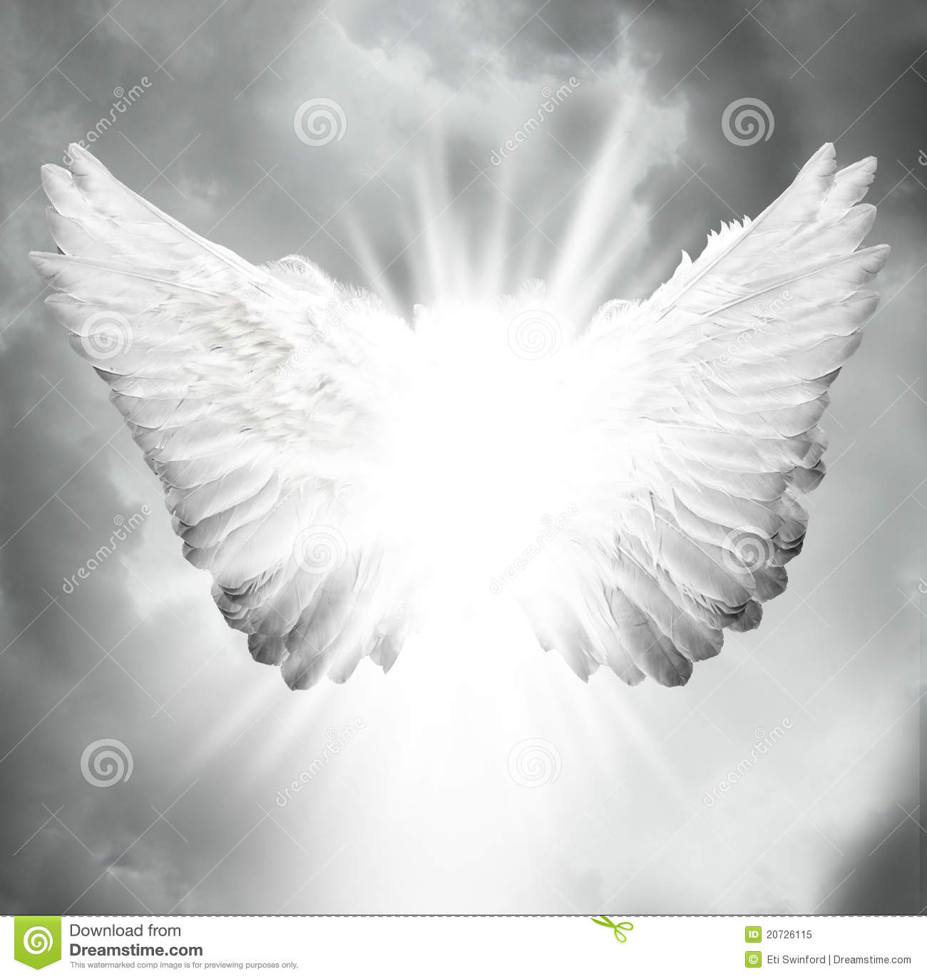 Angel Wings Stock Photos, Images, & Pictures - 17,537 Images