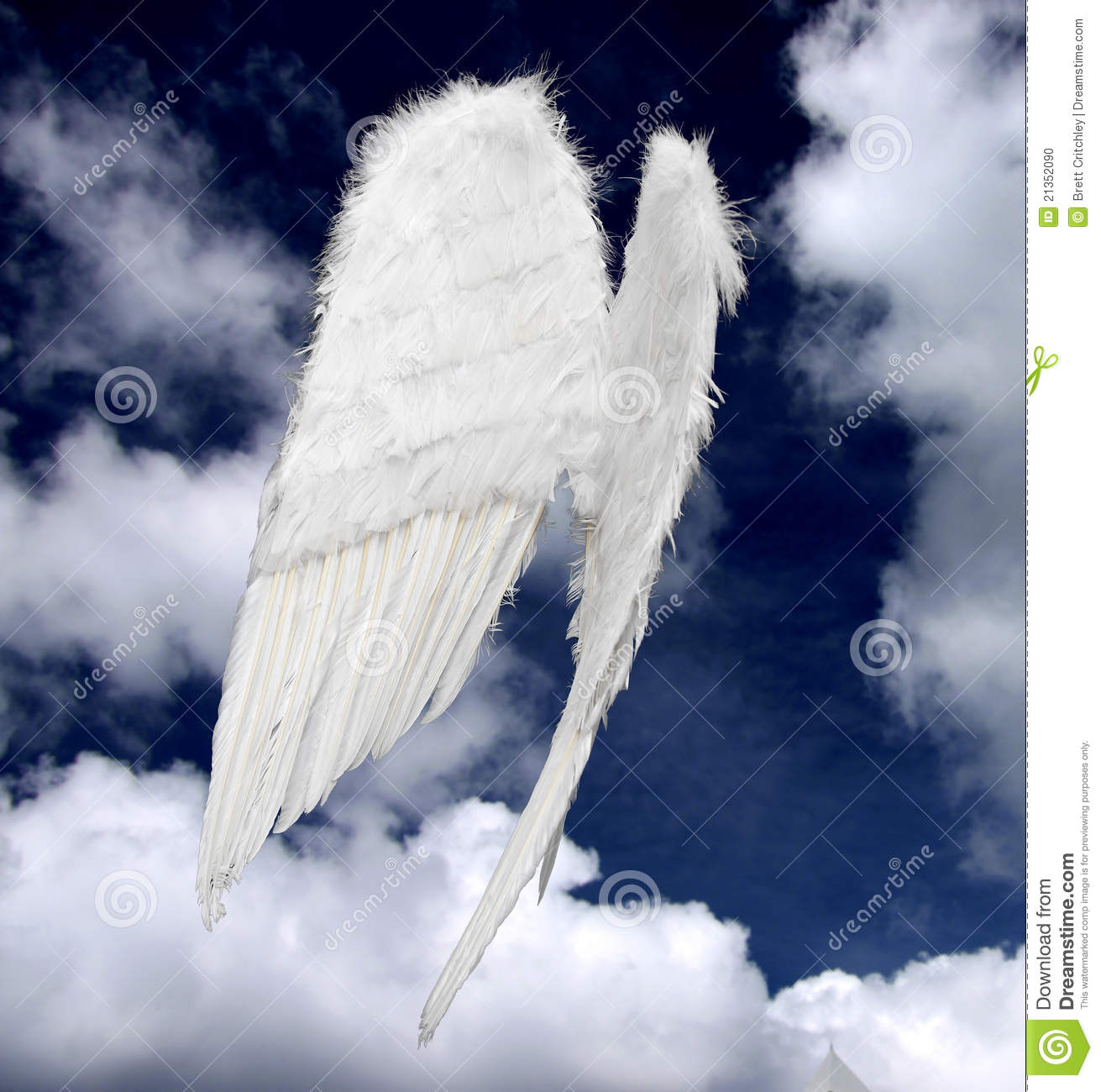 Angel Wings Stock Photo Image Of Blue Ghost Purity