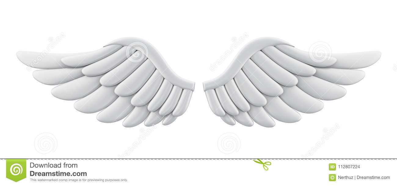 Angel Wings Isolated branco