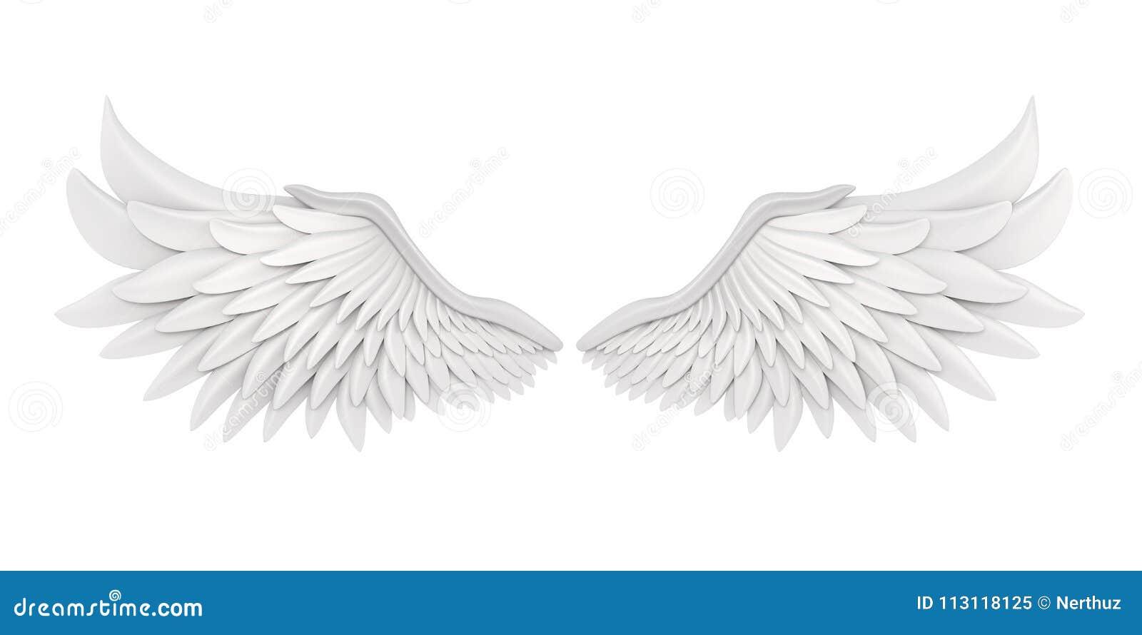Angel Wings Isolated branco
