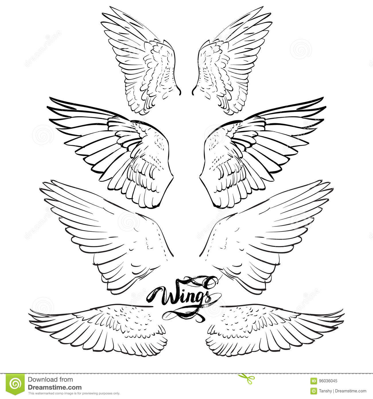 angel wings  lettering  drawing vector stock vector