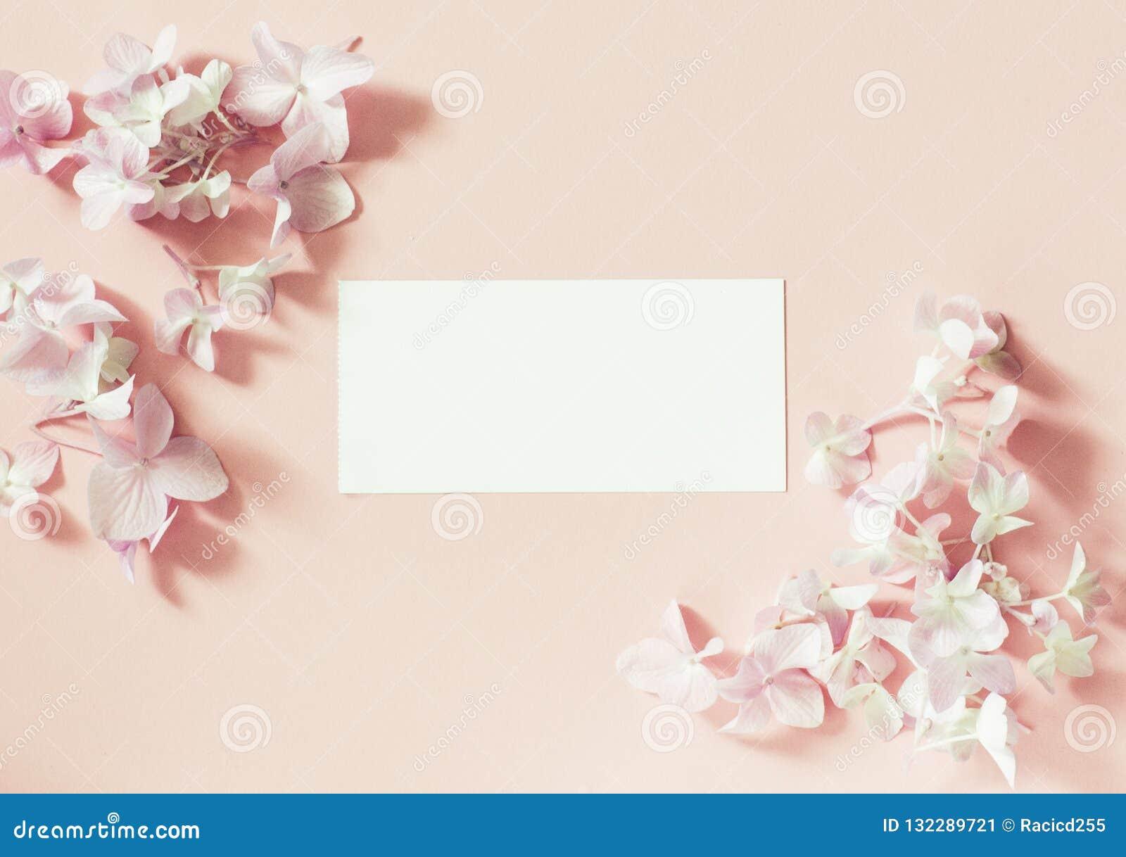Angeredete weibliche Ebene legen auf blassen rosa Pastellhintergrund, Draufsicht Der Desktop der minimalen Frau mit Leerseitenspo