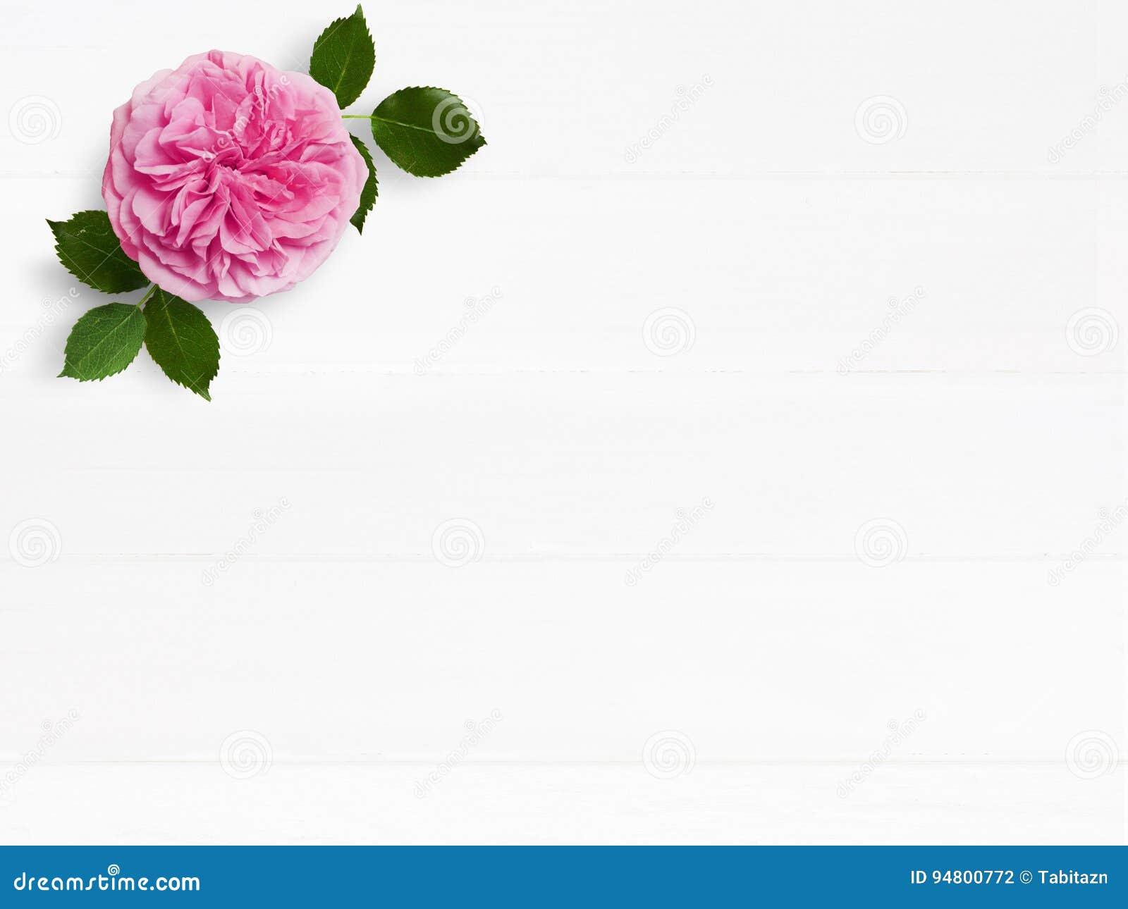 Angeredetes Foto auf Lager Tischplattenmodell der weiblichen Hochzeit mit rosafarbener Blume rosa Englisch und leerem Raum Blumen