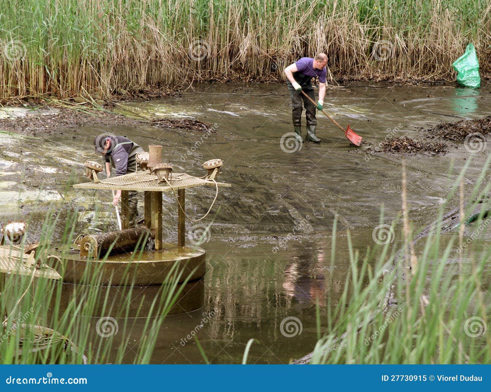 Angestellte, die See leeren