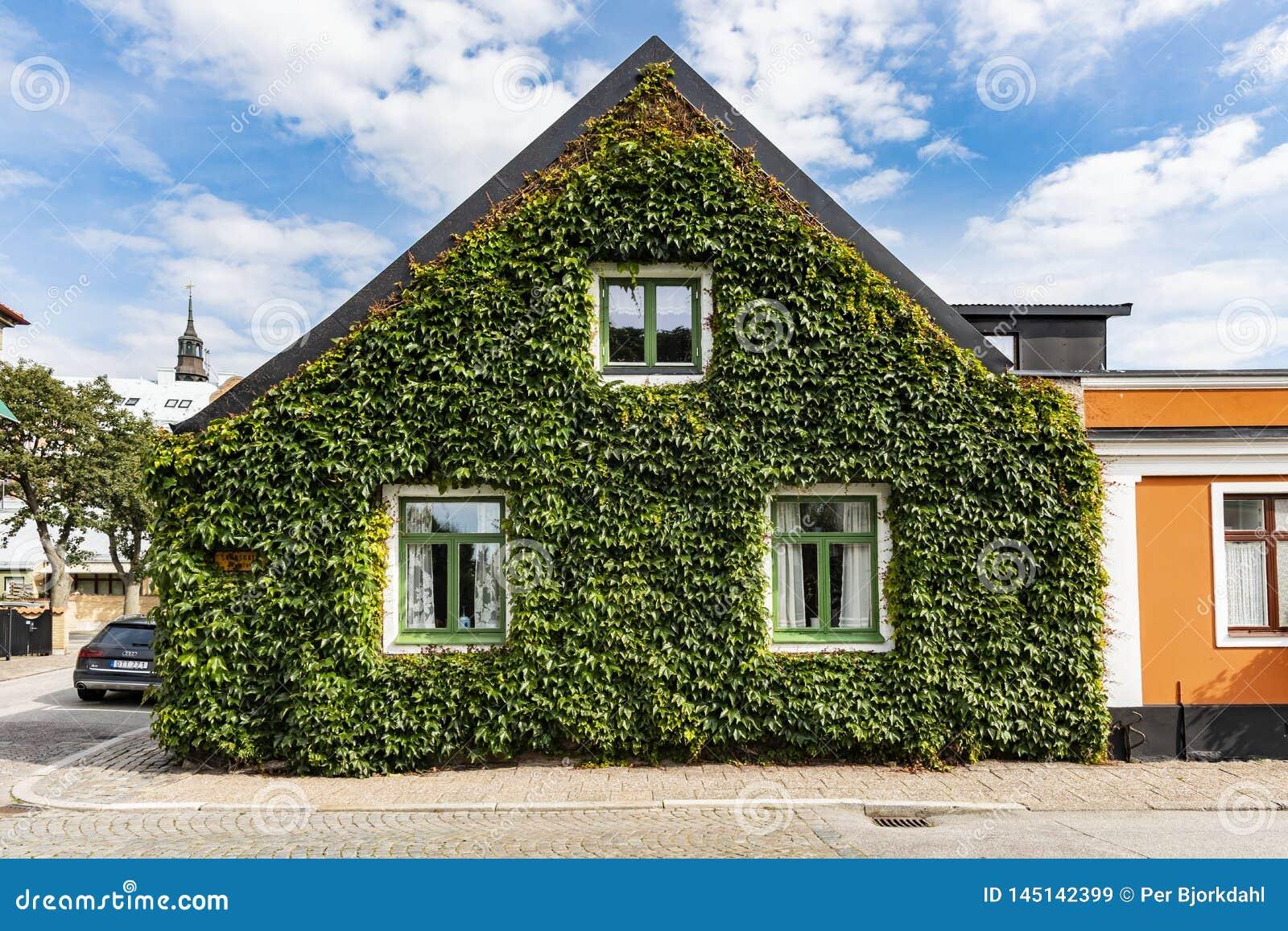 Angielski bluszcza nakrycia dom dwuokapowy Ystad Szwecja