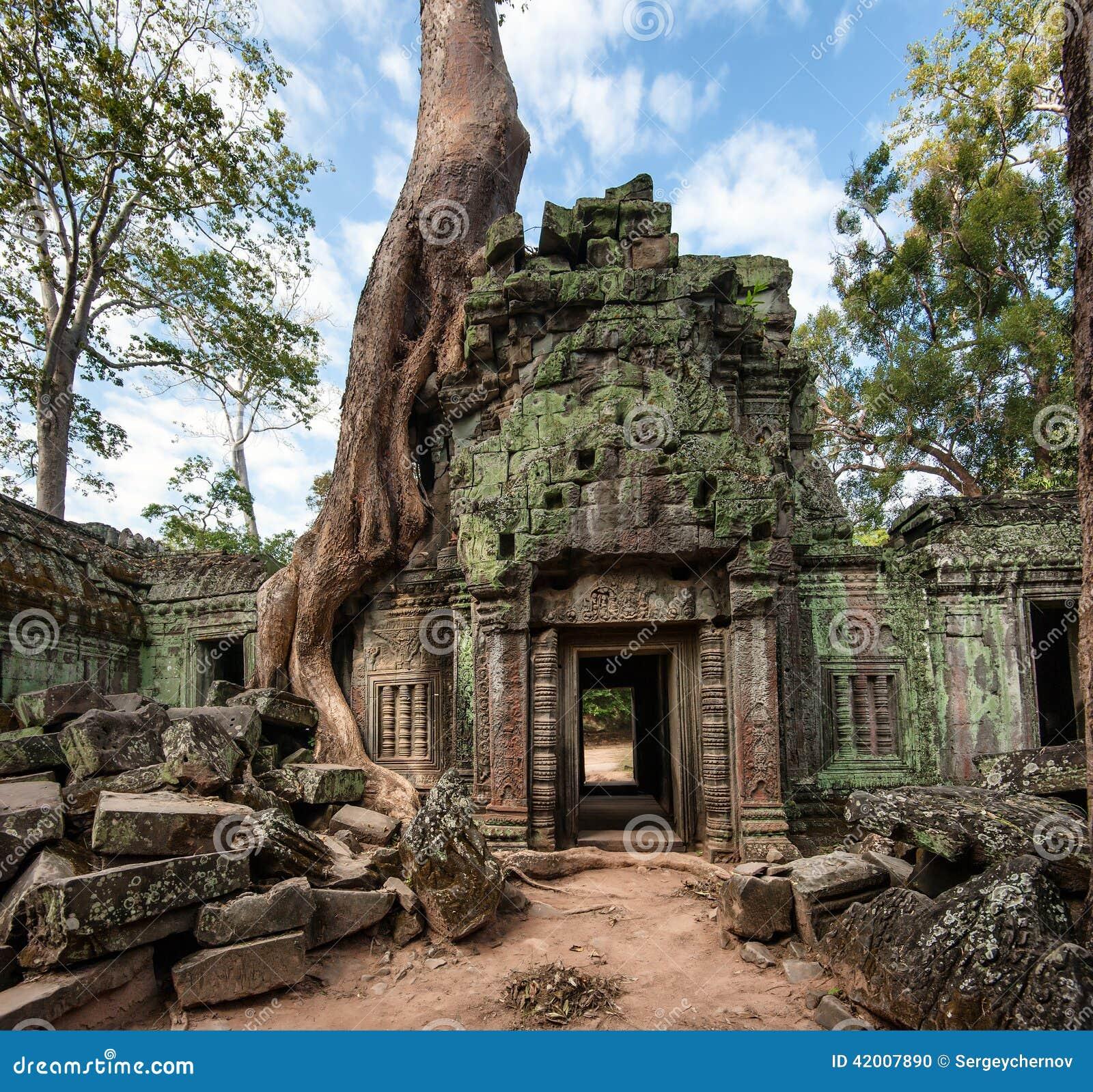 Angkor Wat Cambodia Templo budista antigo do Khmer de Ta Prohm