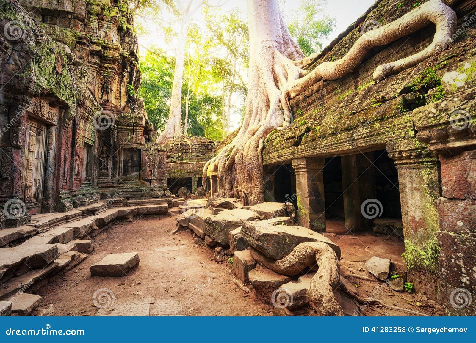 Angkor Wat Cambogia Tempio buddista antico khmer di Prohm di tum
