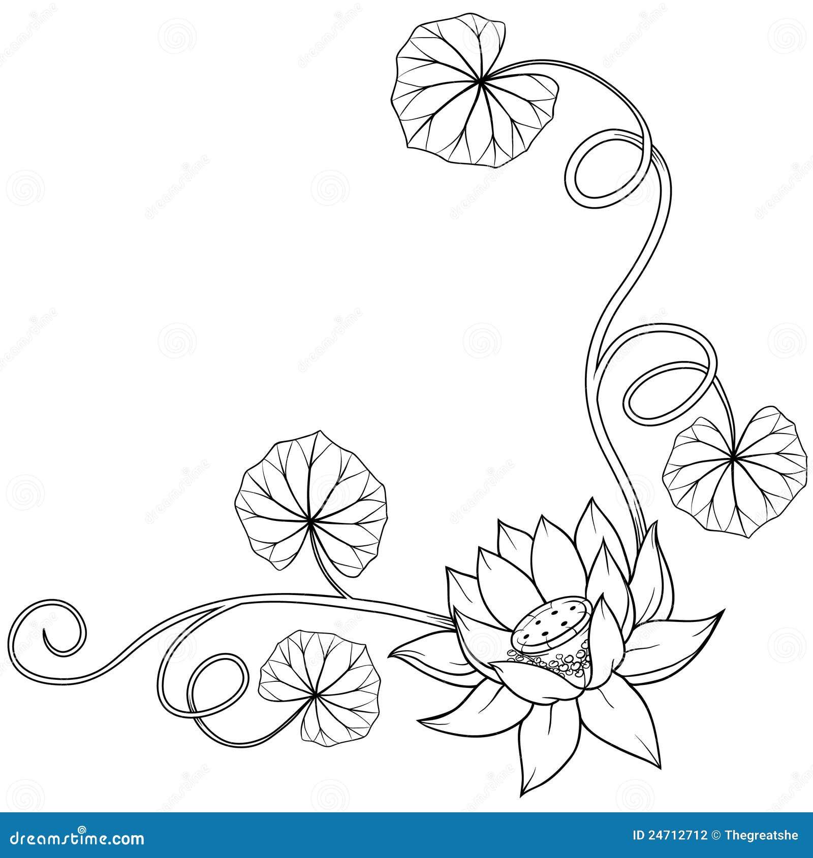 del fiore di loto con i fogli. Illustrazione monocromatica isolata di ...