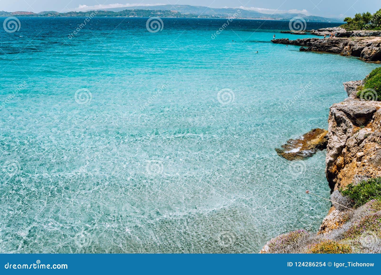 Angra tranquilo pequena com água azul rasa calma Floresta acolhedor do pinho ao longo da baía costal rochosa bonita idyllic