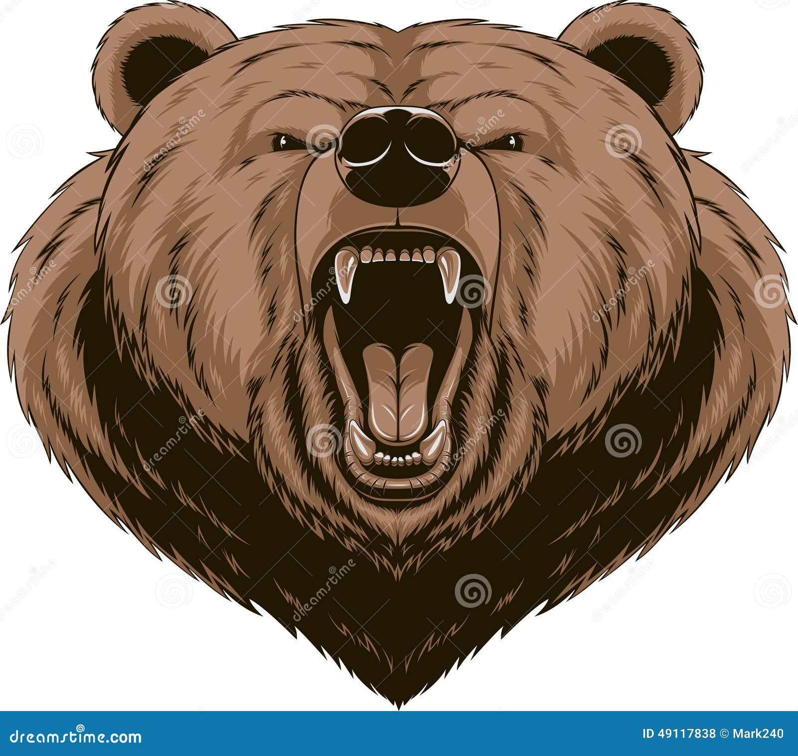 Angry bear head drawing - photo#13