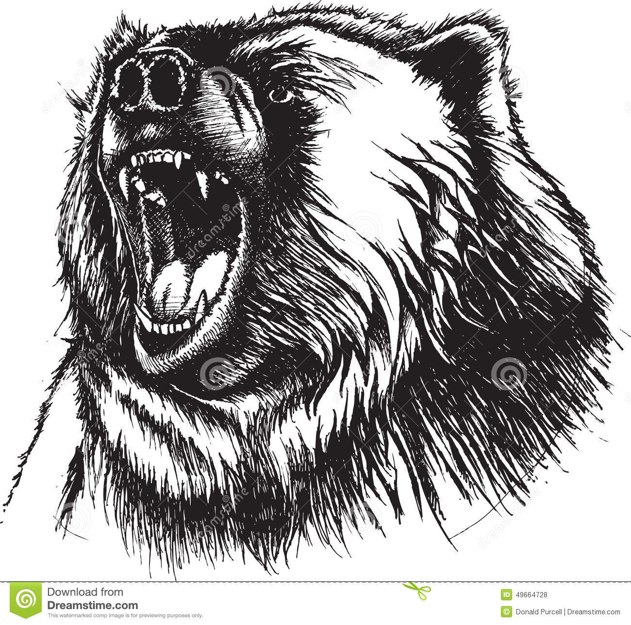 Angry Bear Stock Vector - Image: 49664728