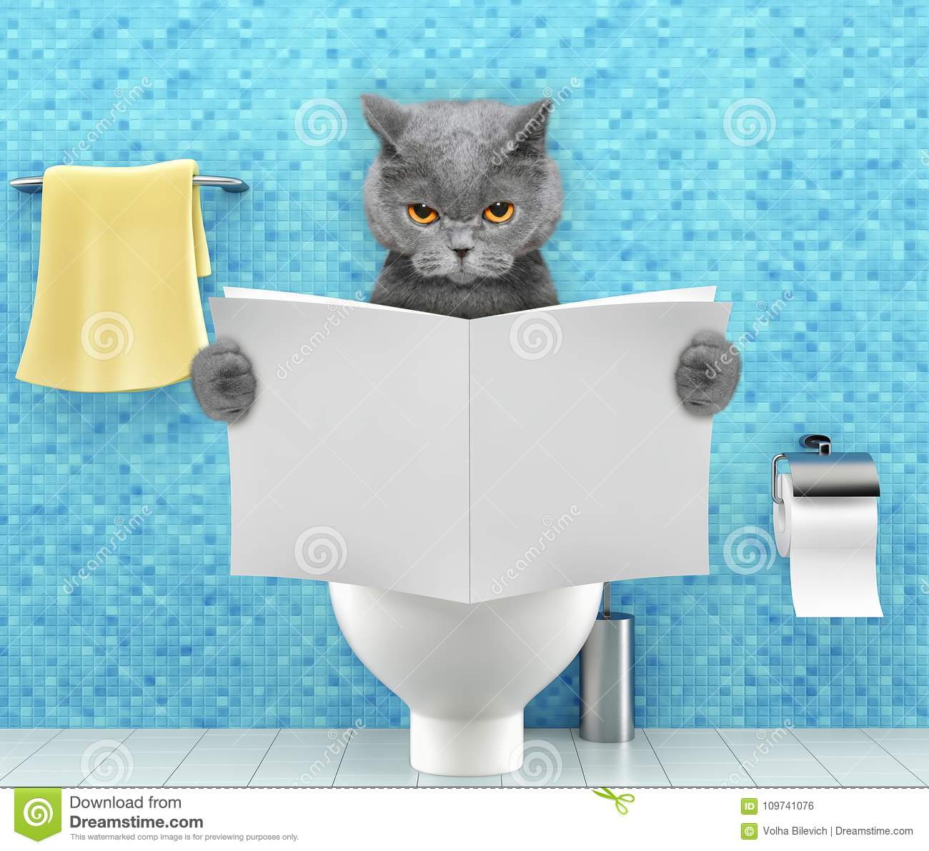 Angry cat sitting on a toilet seat with digestion problems or constipation reading magazine or newspaper