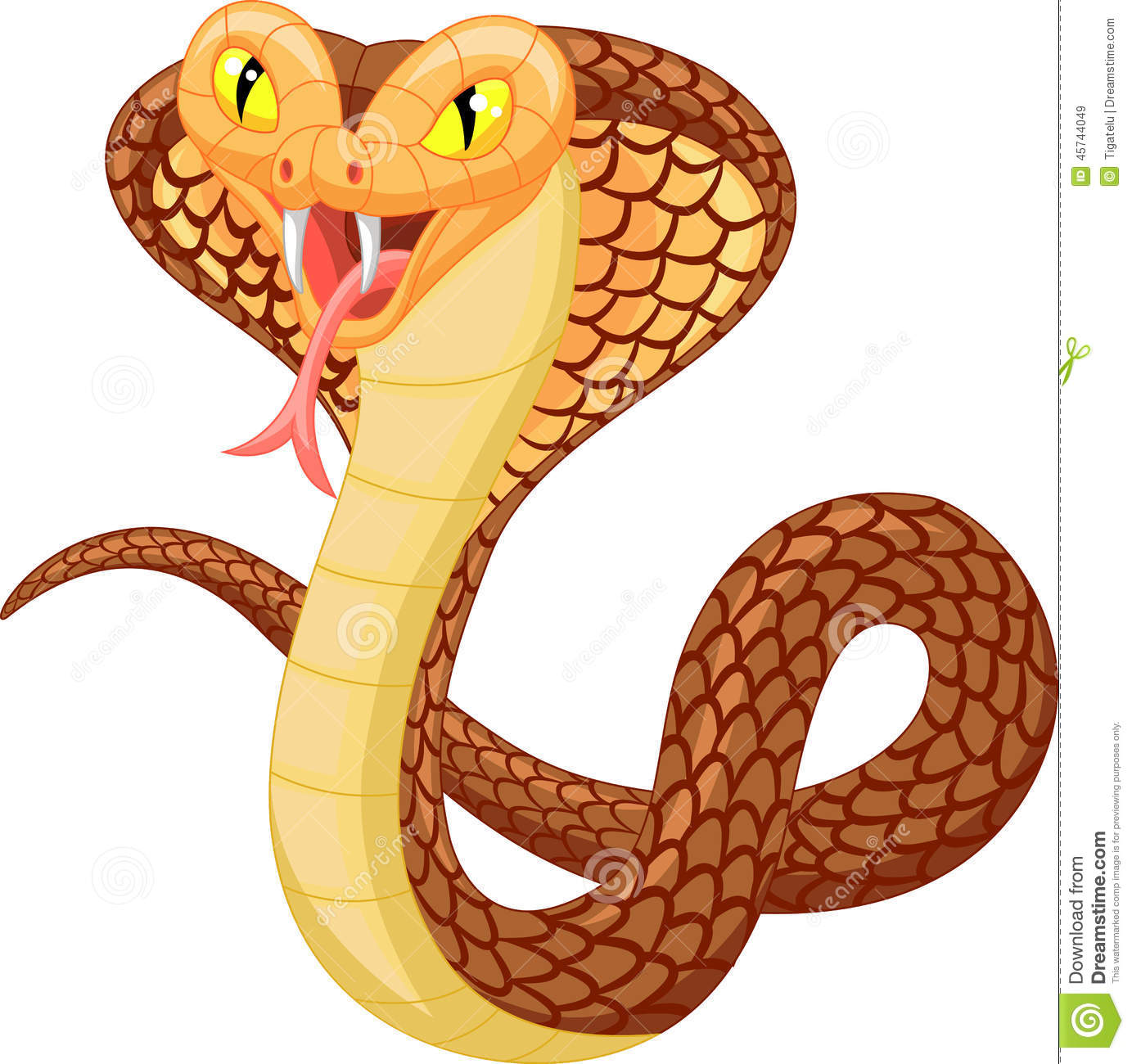 Angry Cobra Cartoon Stock Vector - Image: 45744049