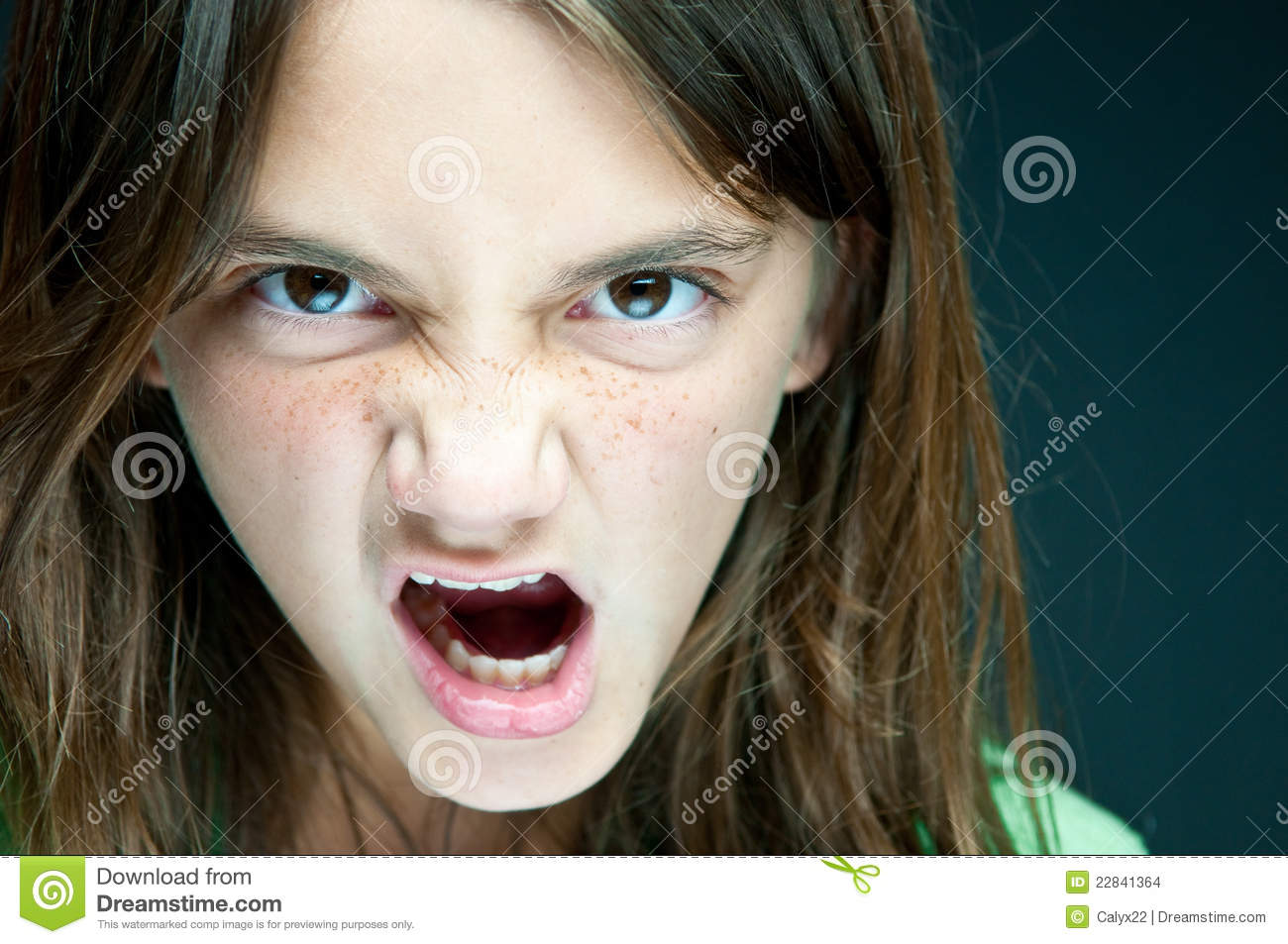The Angry Girl Stock Images - Image: 22841364