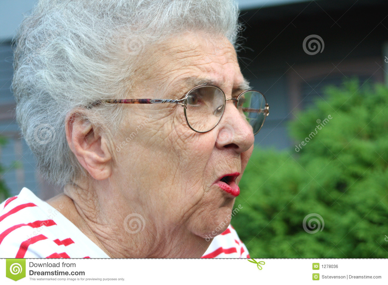Stock illustrations senior citizen lady with a sign stock clipart - Angry Grandmother Royalty Free Stock Image Image 1278036