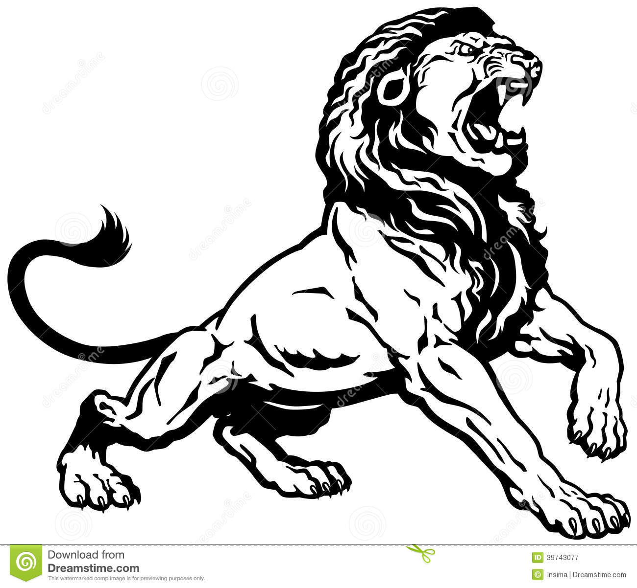 70f24f672 Angry lion stock vector. Illustration of creature, male - 39743077