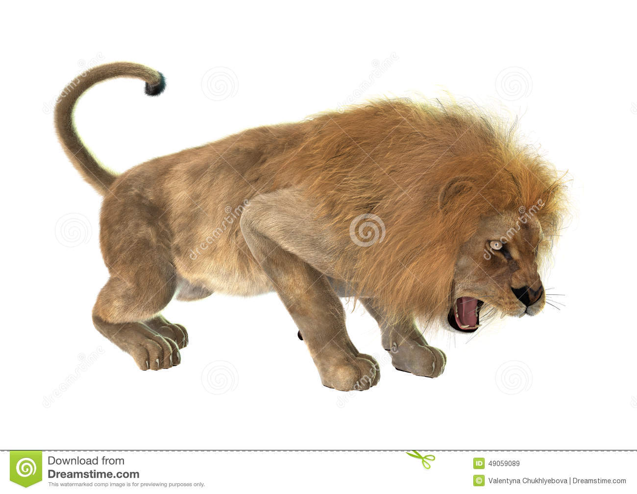 angry lion stock photos images u0026 pictures 3 047 images
