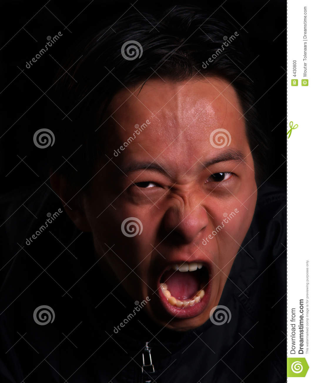 Angry Man Screaming Stock Photo - Image: 4430800