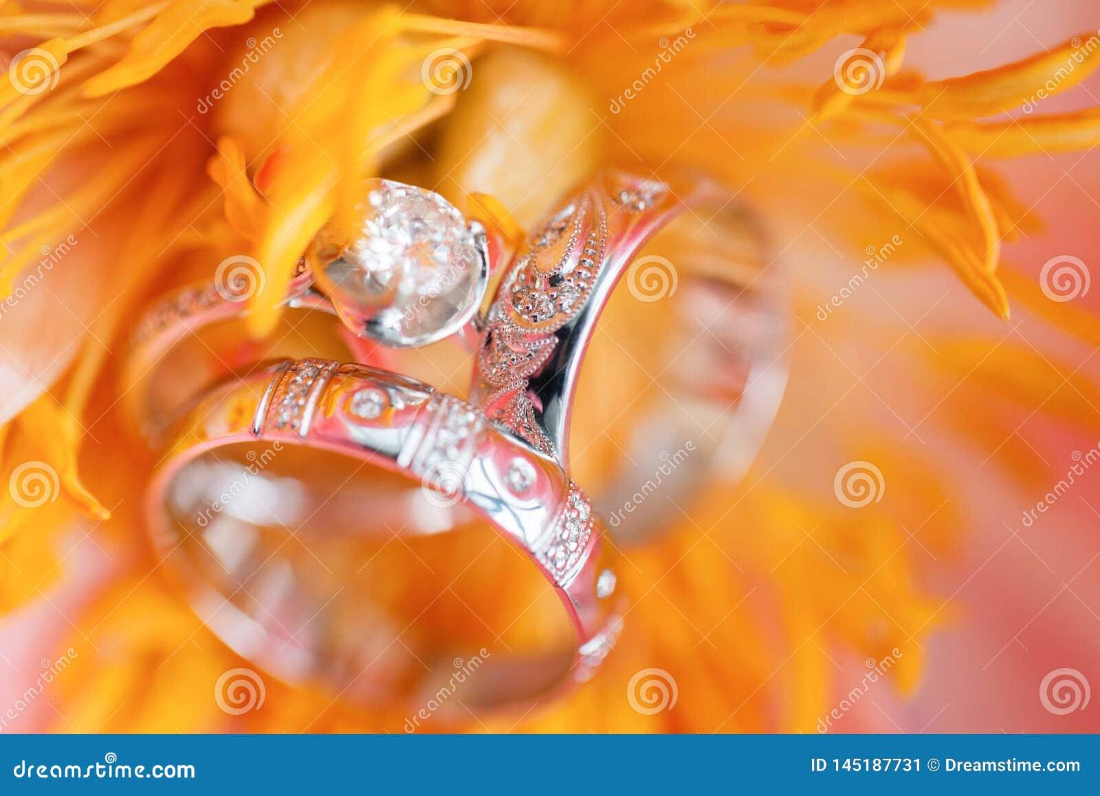 Anillos de bodas en flor