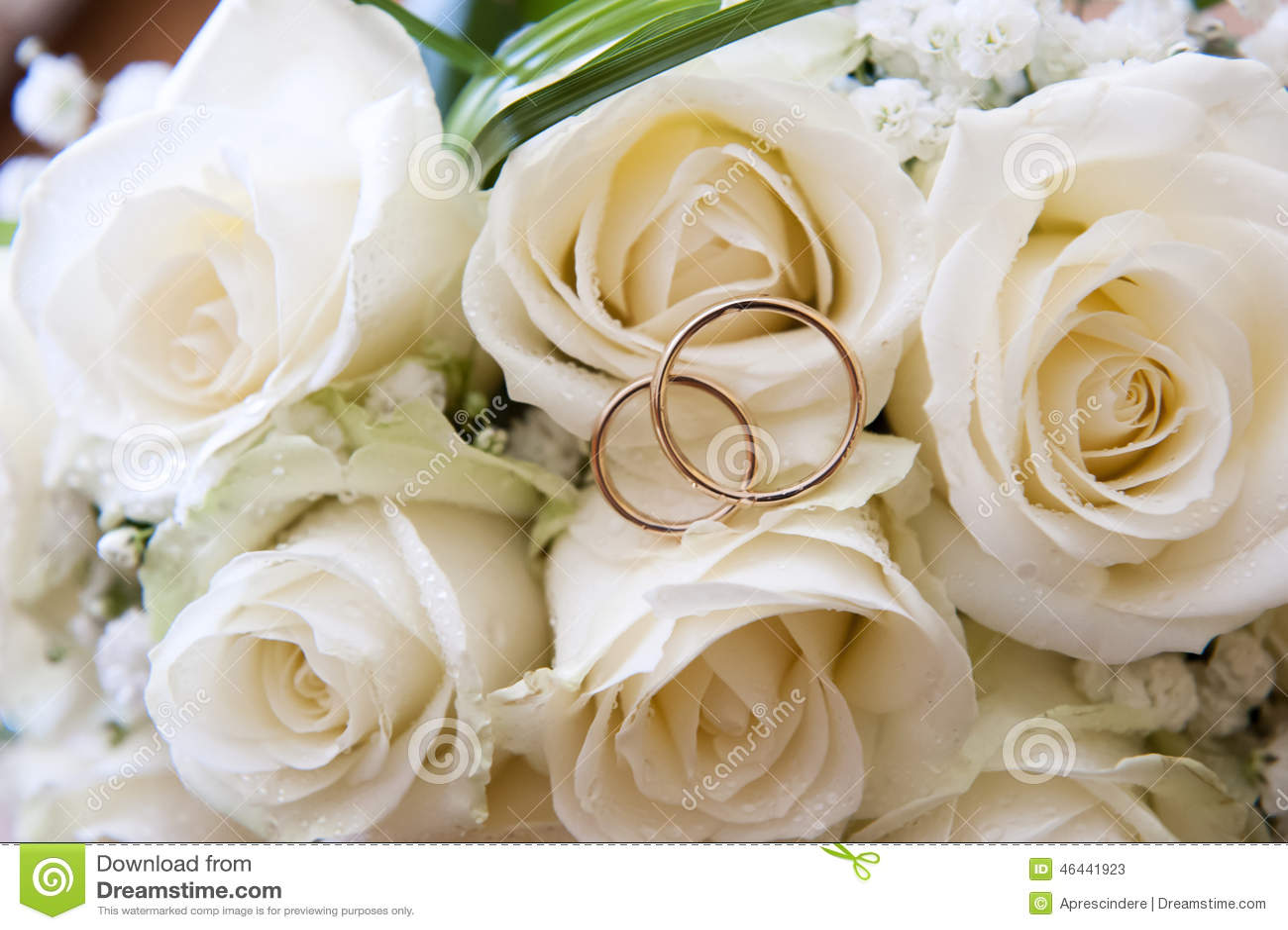 White Ring Roses Download