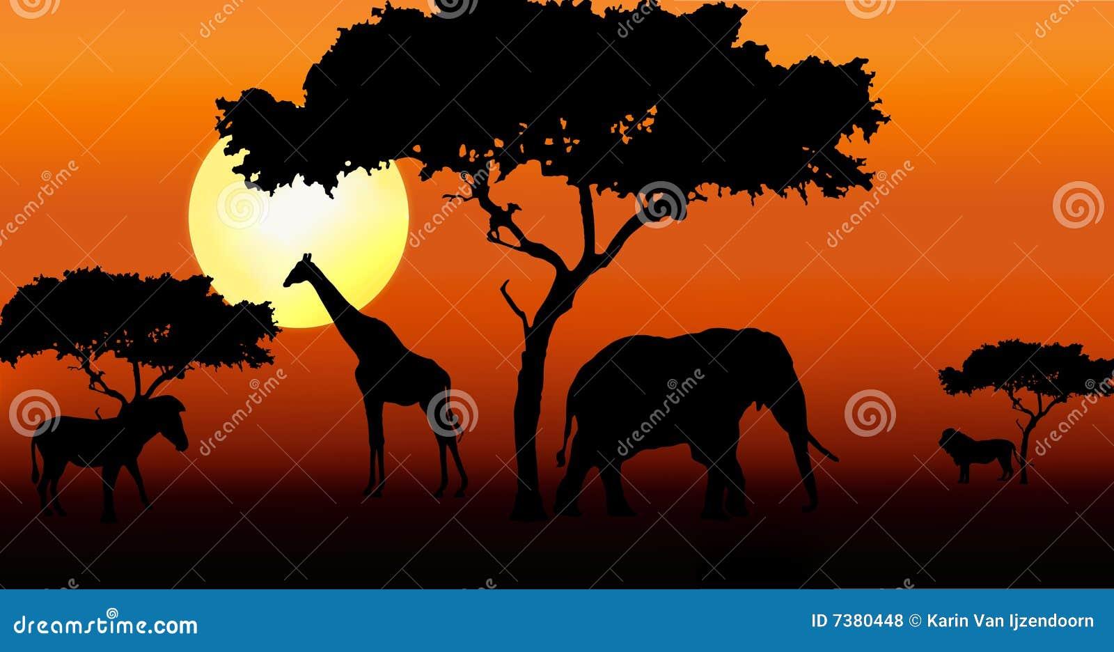 Animais africanos no por do sol