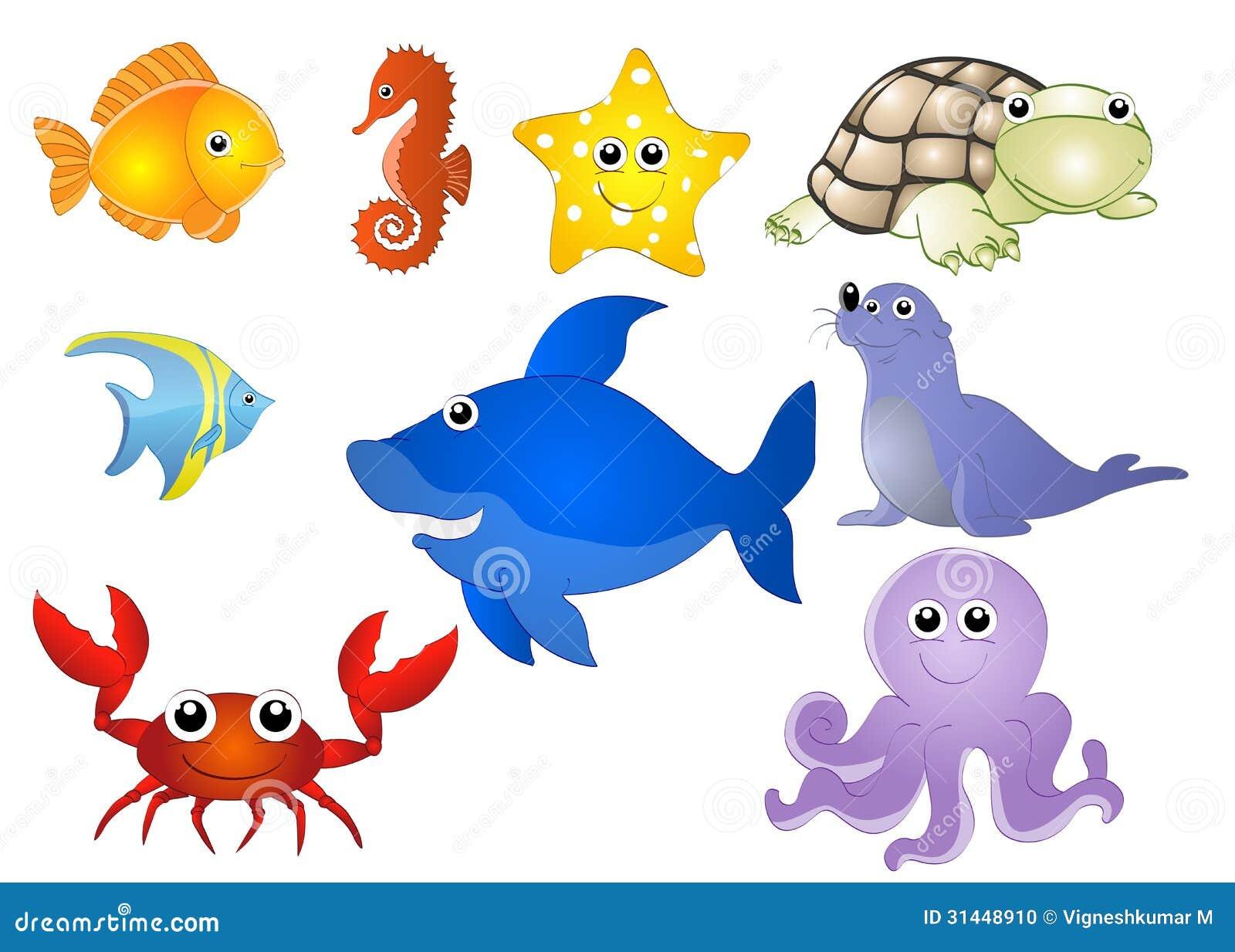 Animais Aquticos Foto De Stock Imagem 31448910