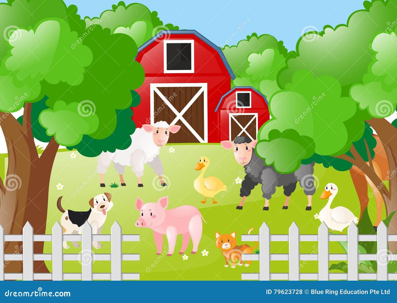Animais de exploração agrícola que vivem o pátio