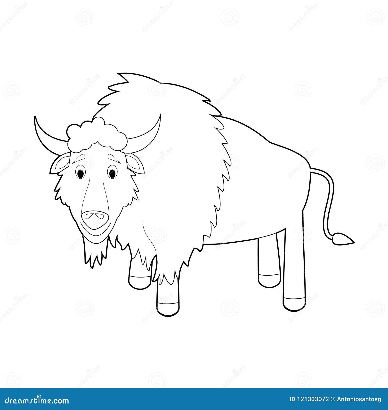 Animais Faceis Da Coloracao Para Criancas Bufalo Ilustracao Do