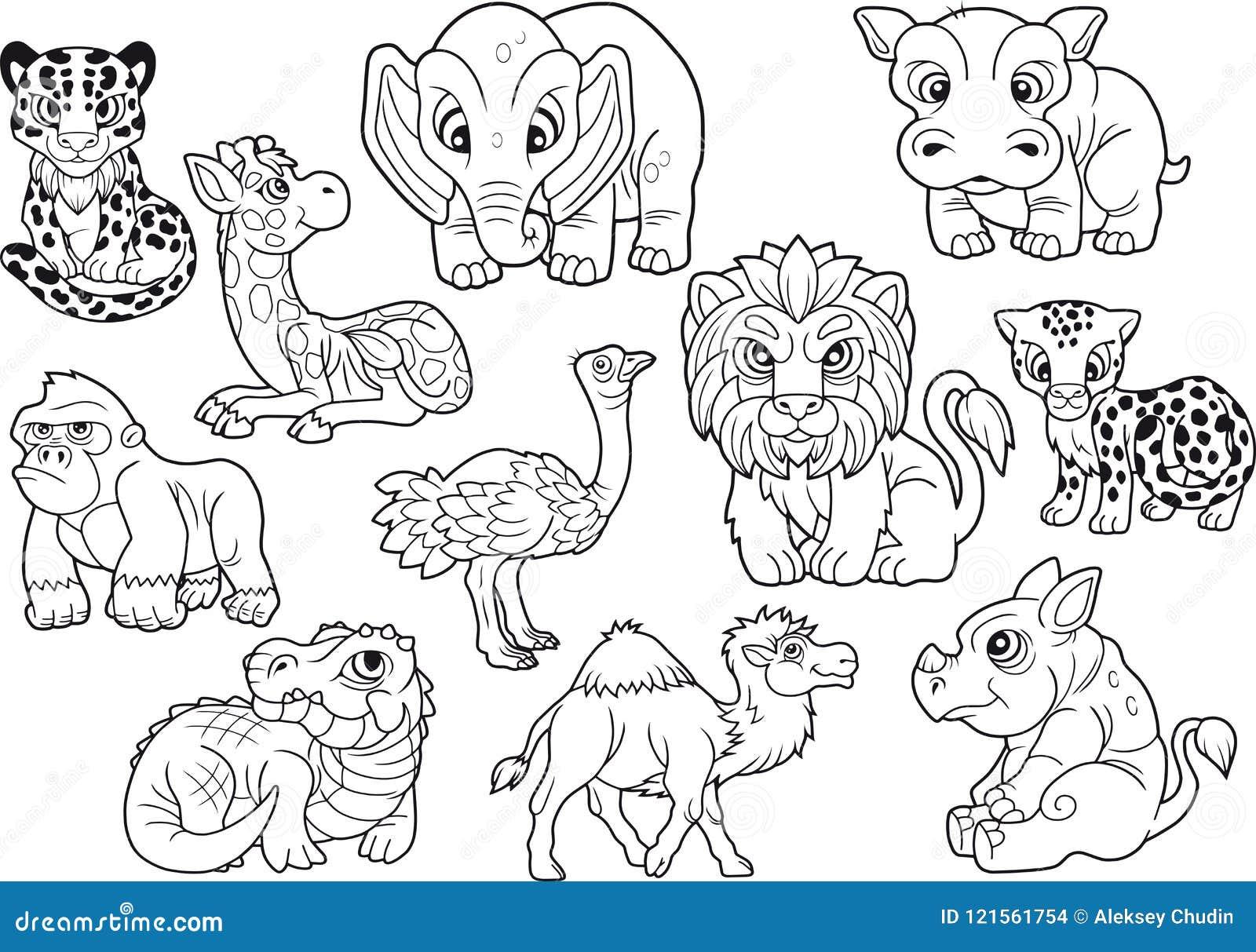 Animais Grupo De Imagens Bonitos Do Vetor Livro Para
