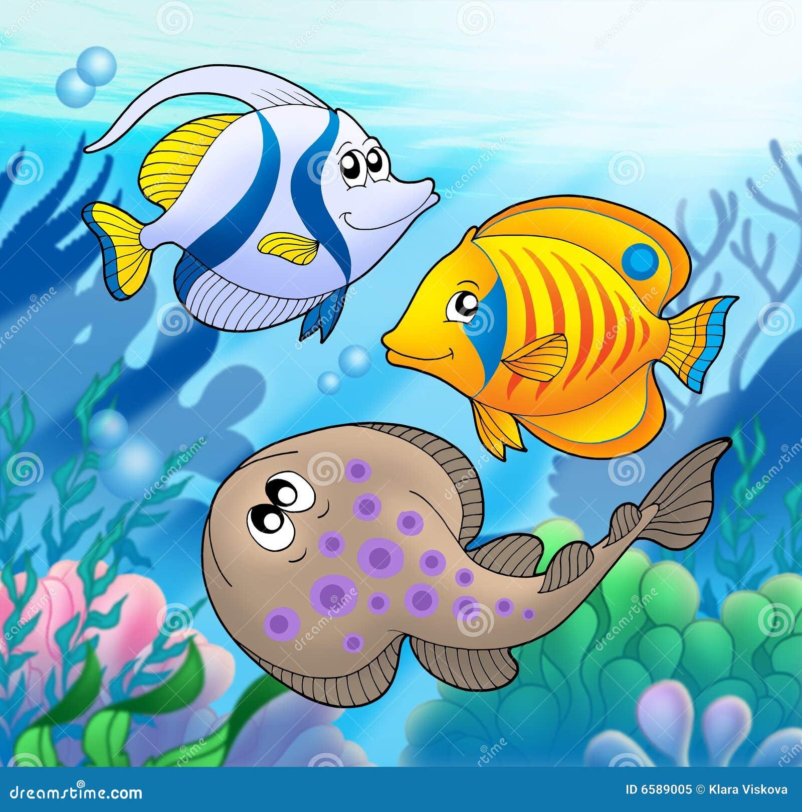 Animais marinhos bonitos 2 foto de stock royalty free for Immagini coralli marini