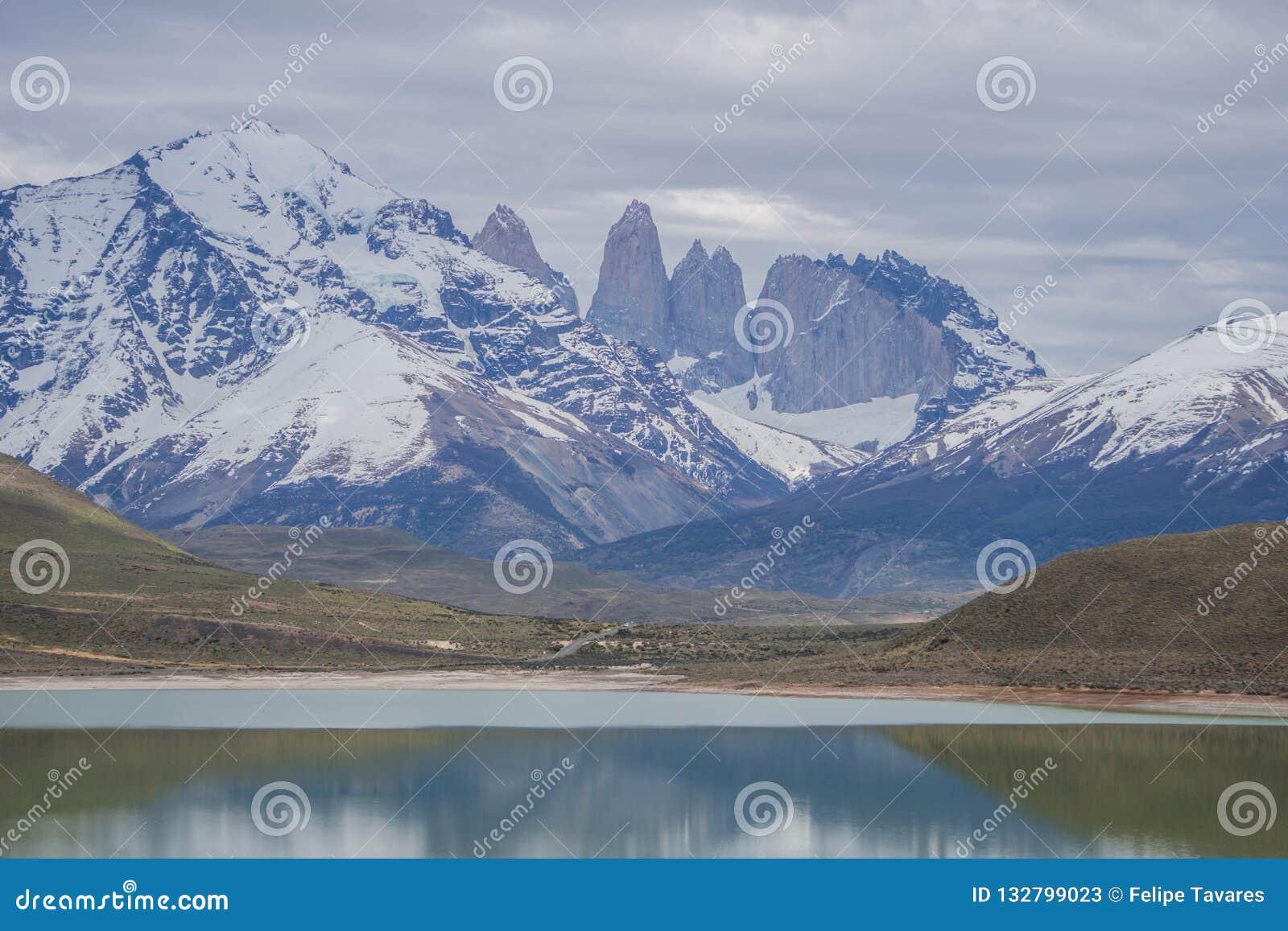 Animais selvagens e natureza em Parque Torres del Paine, o Chile, Patagonia