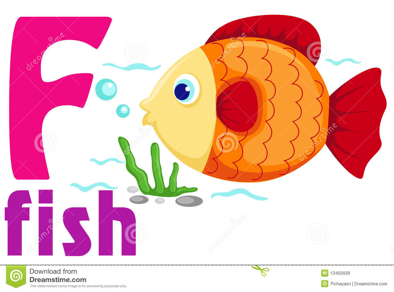 Fish That Starts With The Letter Z