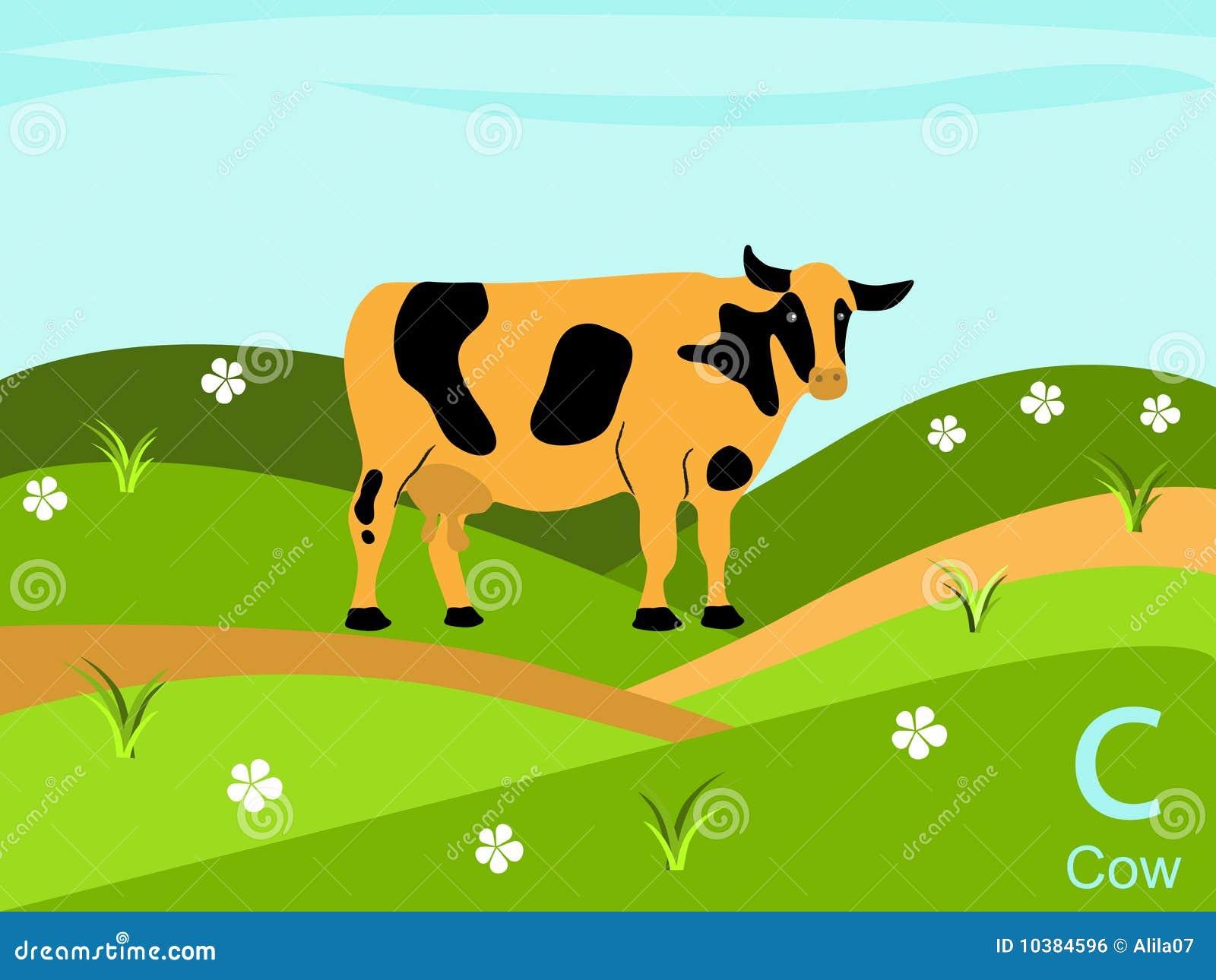Royalty Free Stock Image Animal Alphabet Flash Card C Cow Image10384596 on Animal Habitat Preschool Art