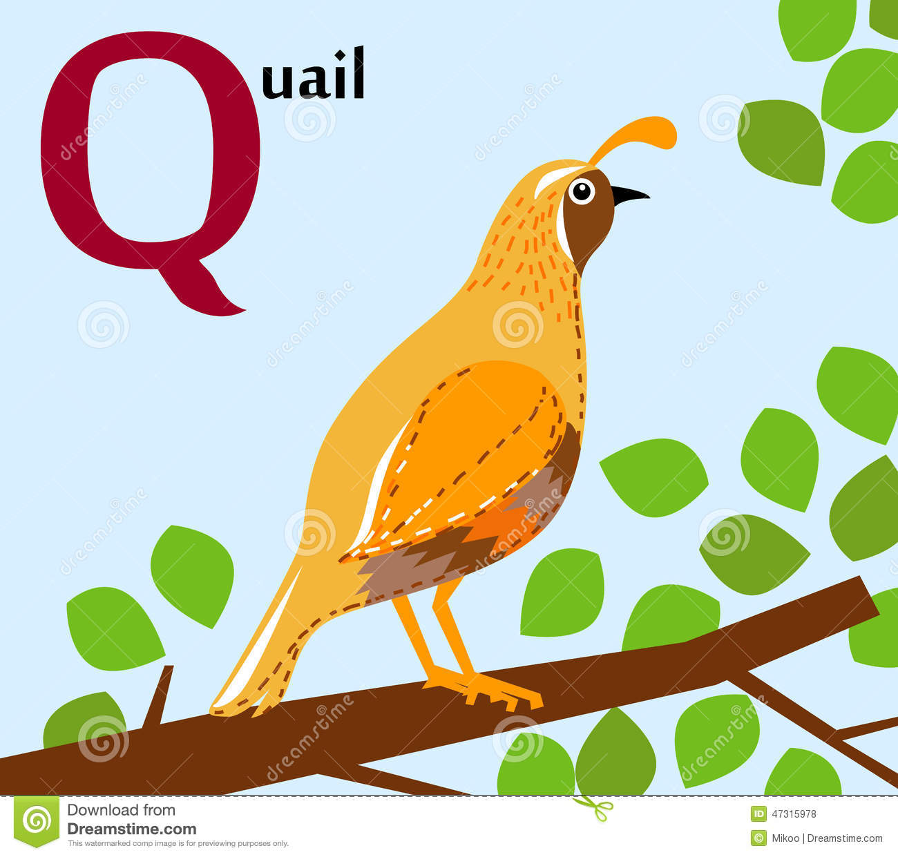 animal alphabet for the kids q for the quail stock vector   image
