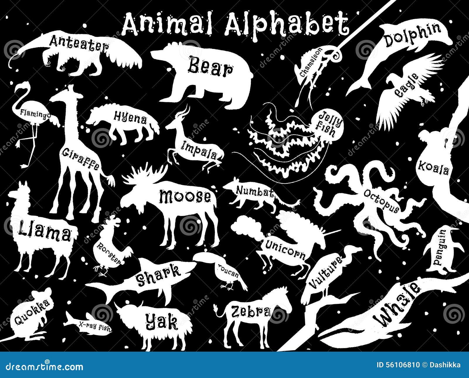 Download Animal Alphabet Poster For Children Animals Stock Vector