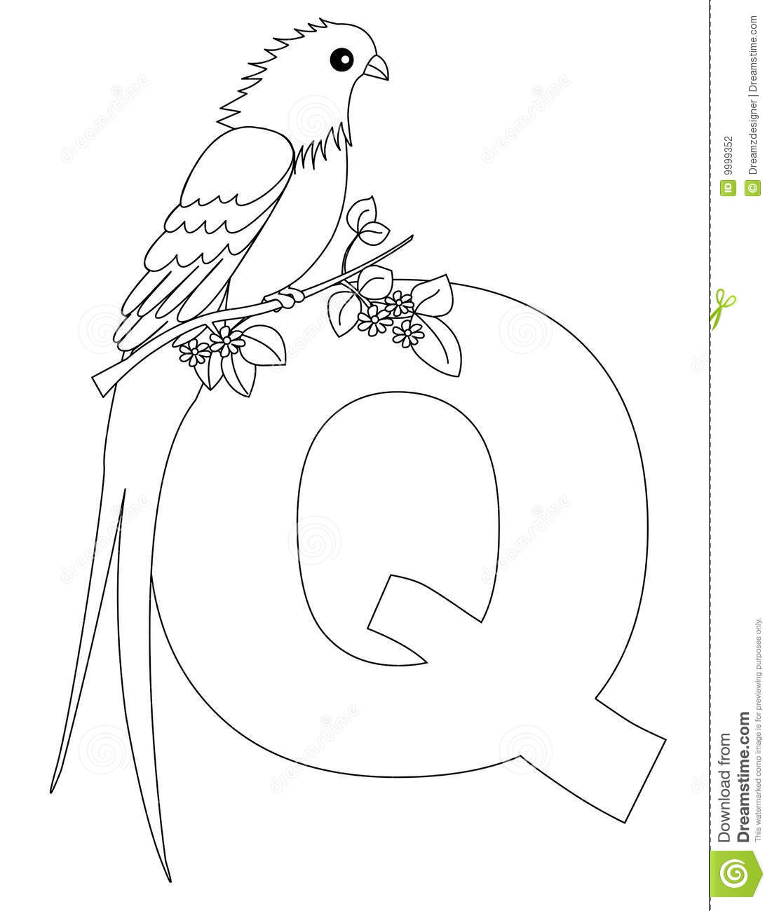 Download Animal Alphabet Q Coloring Page Stock Vector