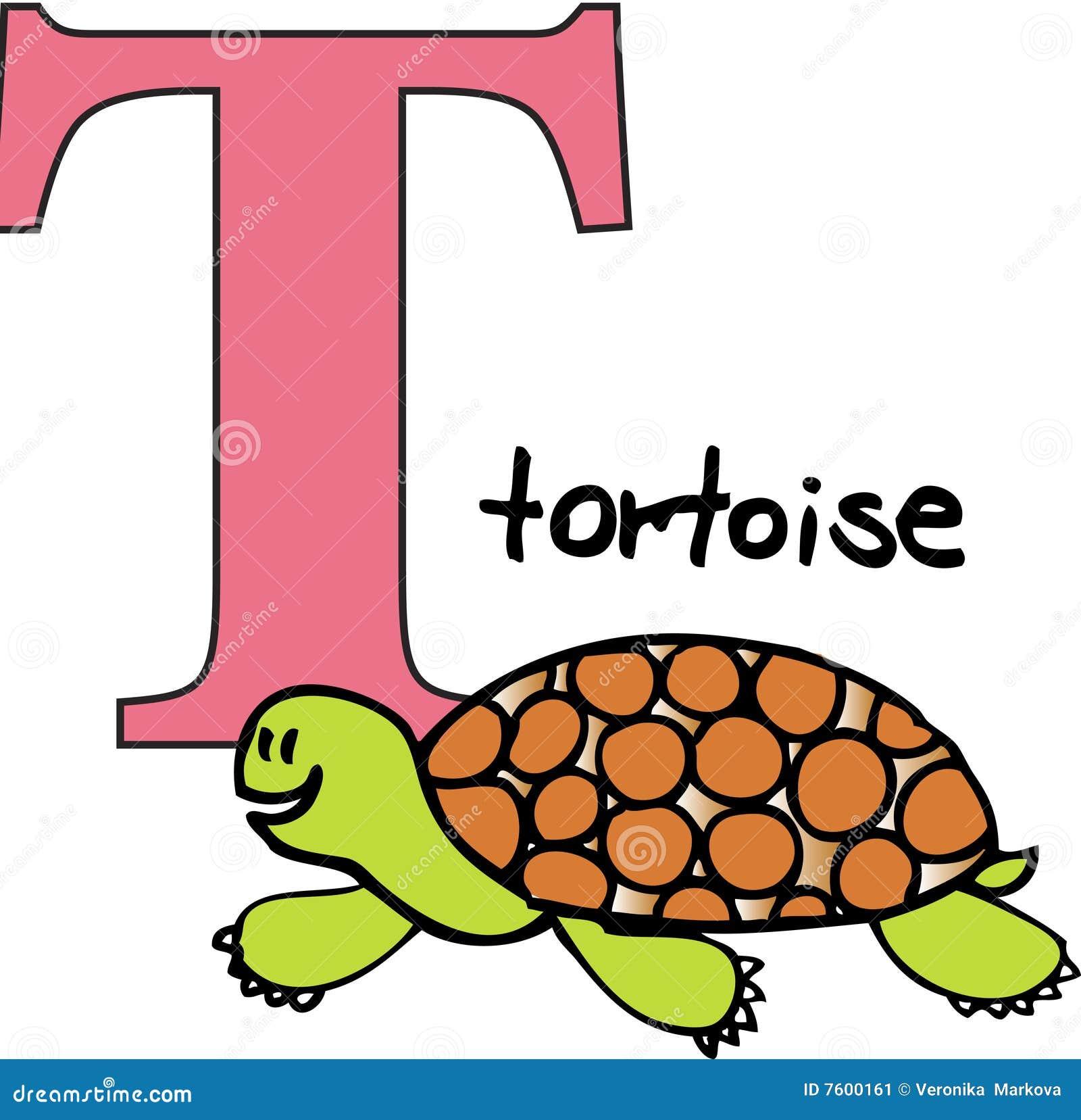 Animal Alphabet T Tortoise Stock Image
