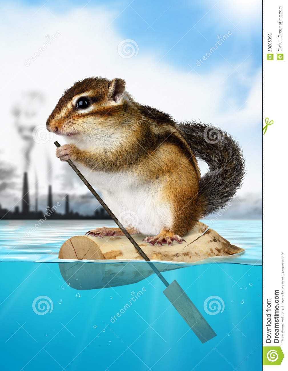 winter ecology of chipmunks Compared to european countries where the siberian chipmunk on the ecology and natural history habiting for summer sleeping and winter torpor.