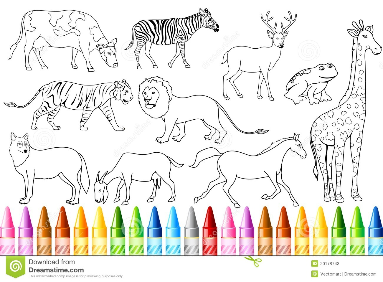 The zoology coloring book - Animal Color Book Stock Photos