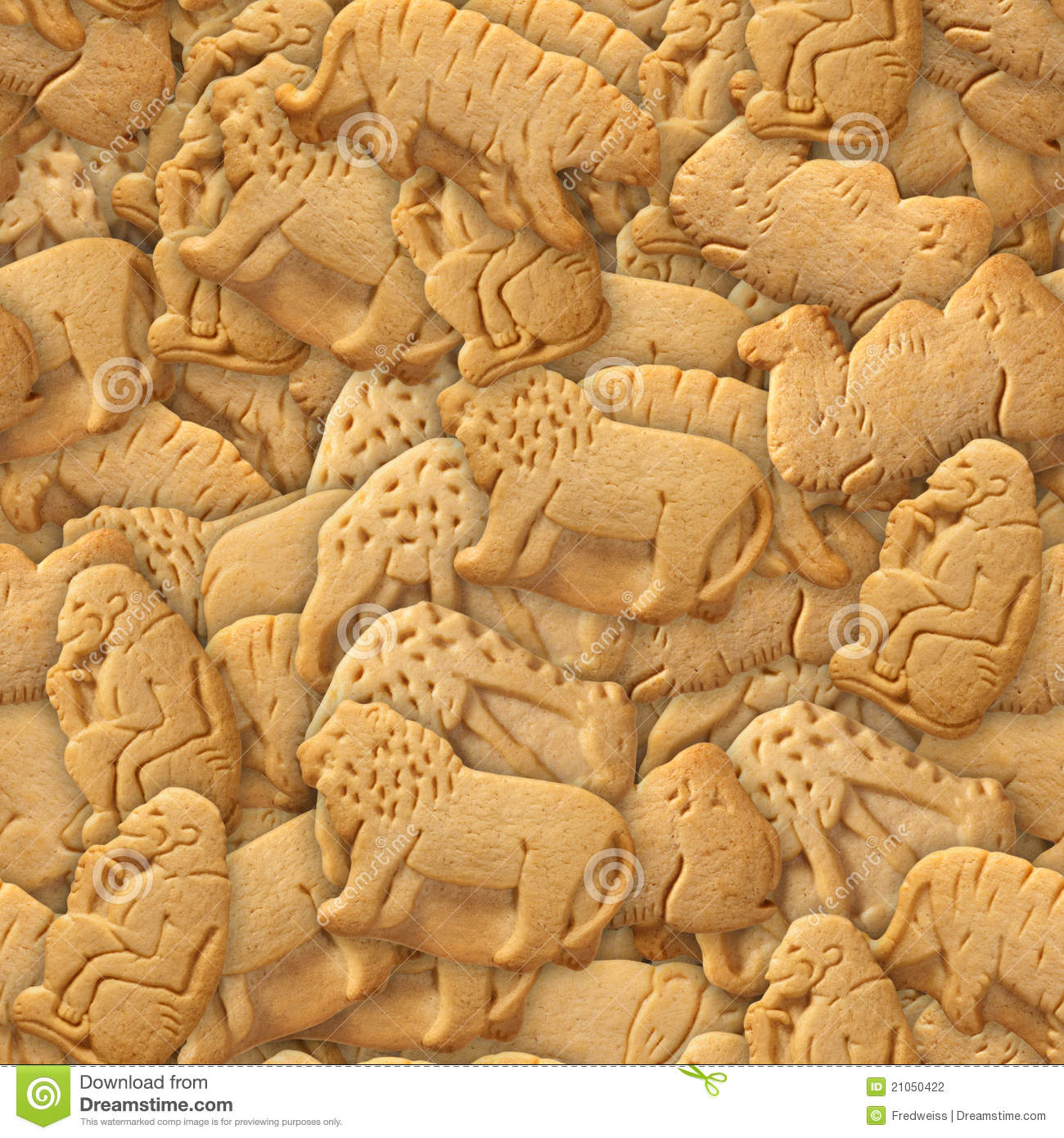 Animal Cracker Cookies Seamless Texture Tile from Photographic ...
