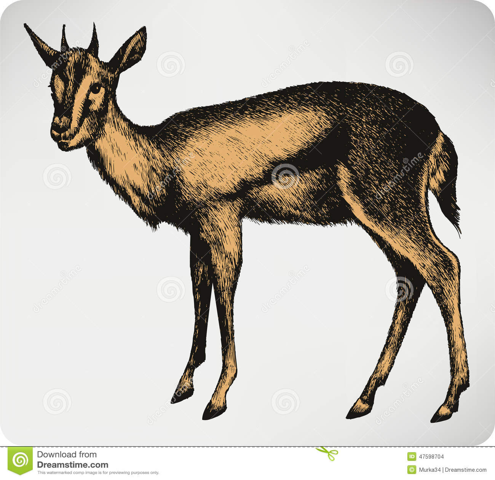 Animal de gazelle main dessin illustration de vecteur illustration de vecteur illustration du - Gazelle dessin ...