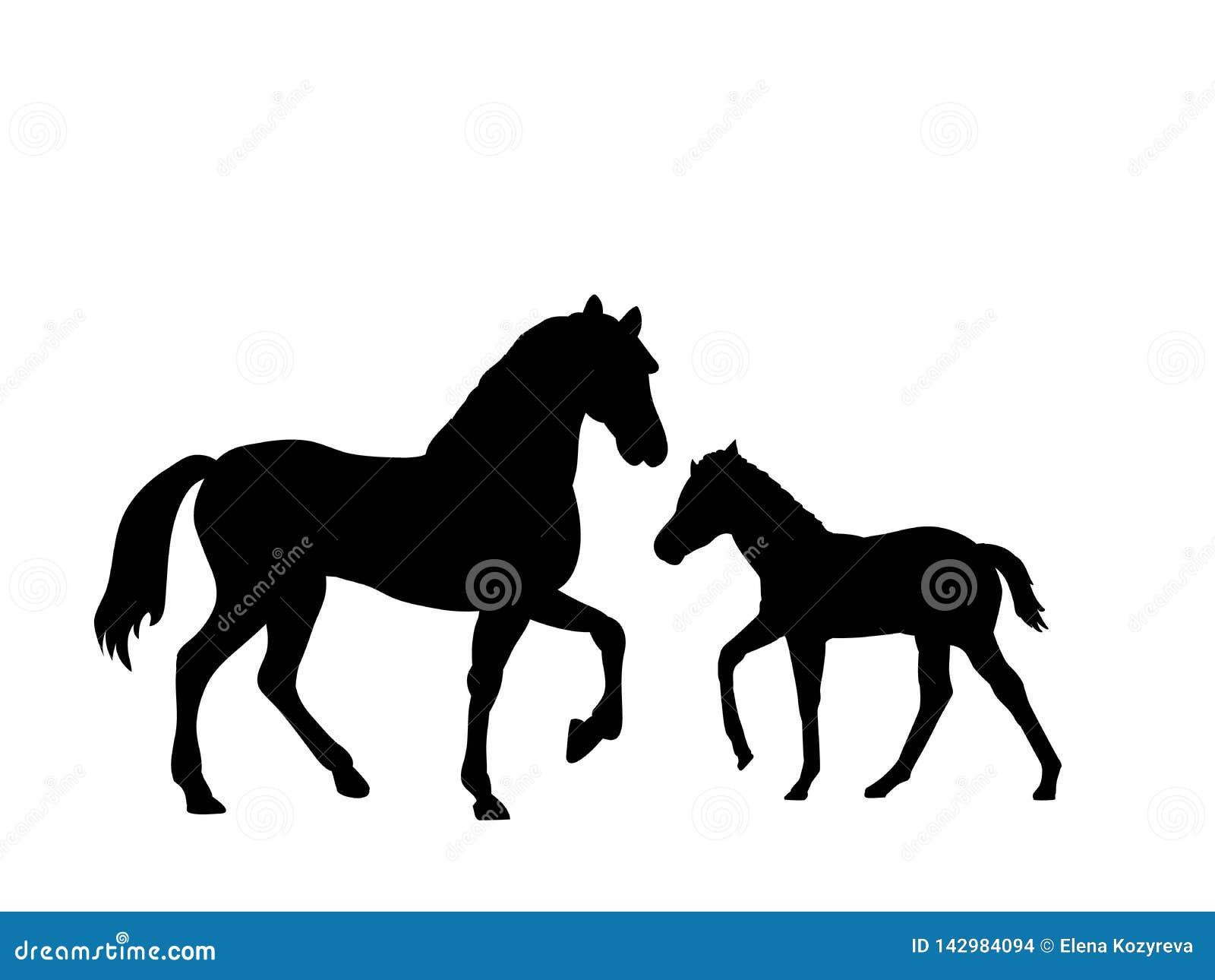 Animal de silhouette de noir de mammifère de ferme de cheval et de poulain