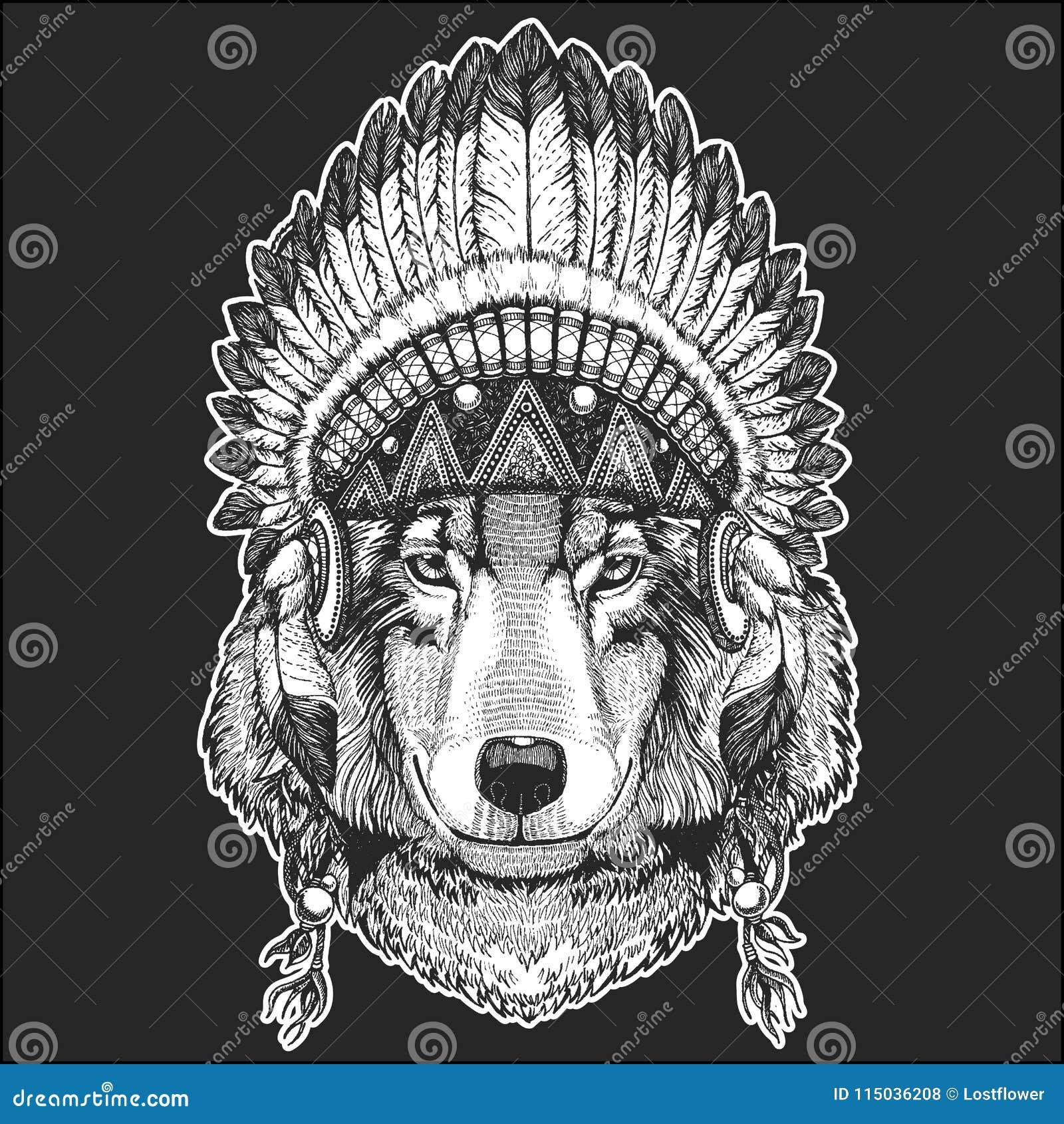 Animal De Wolf Dog Cool Portant La Coiffe Indienne Indigene Avec L