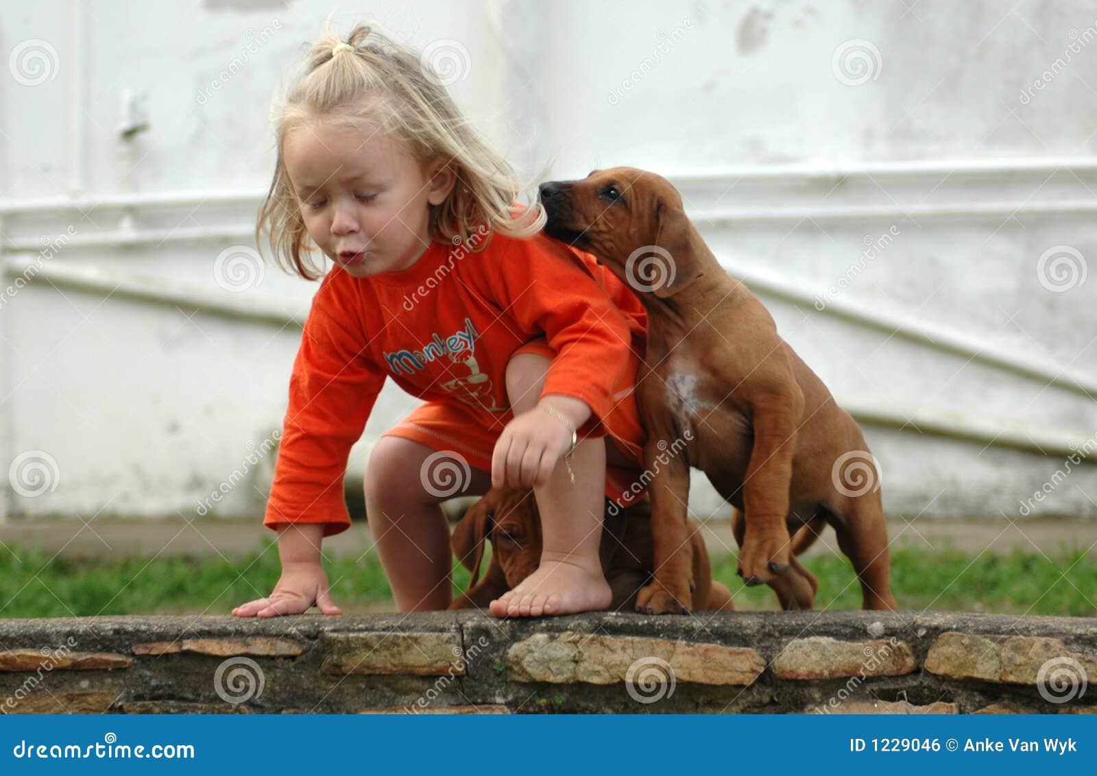 Animal doméstico del niño y del perrito