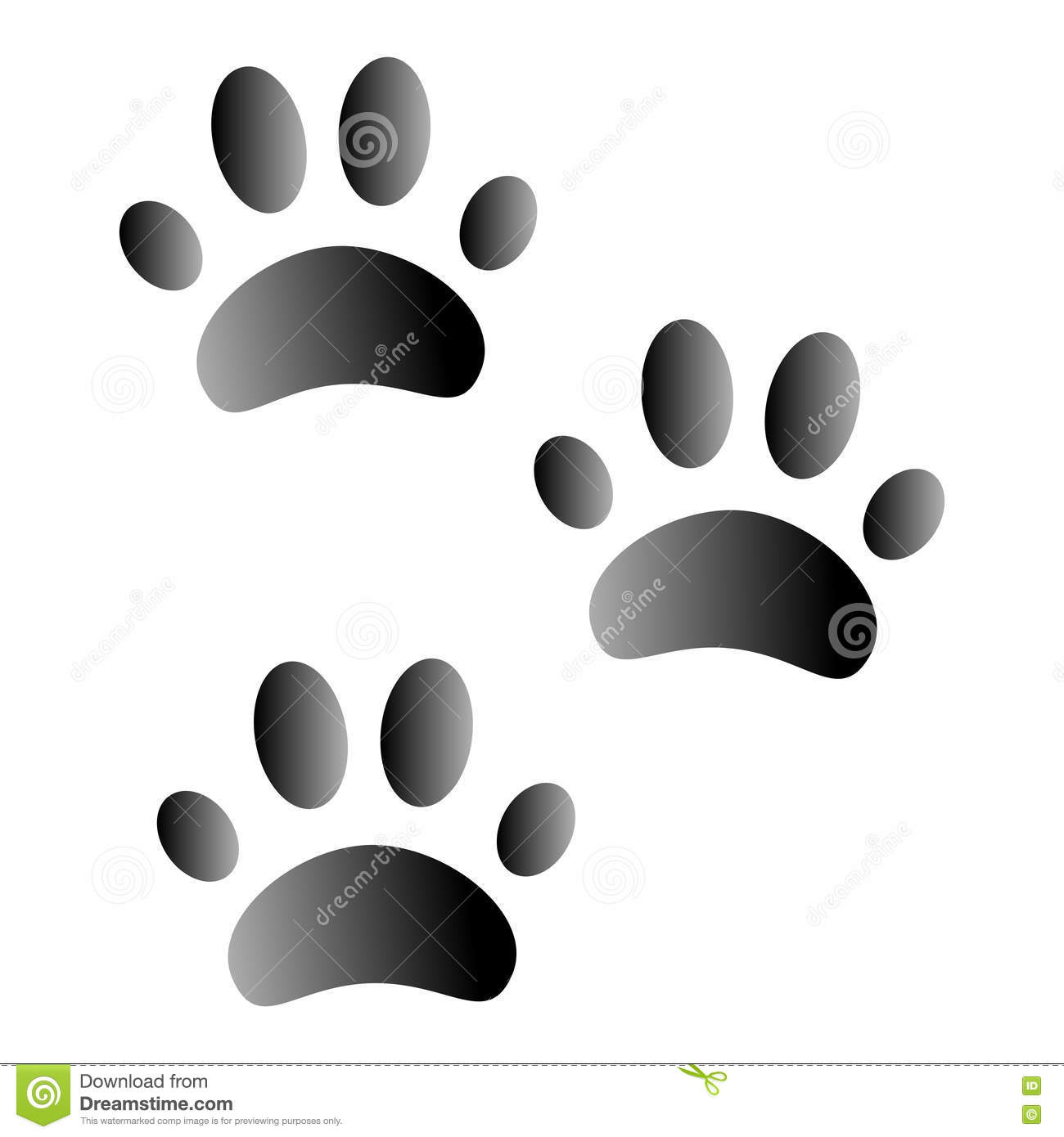 Animal footprints on white background