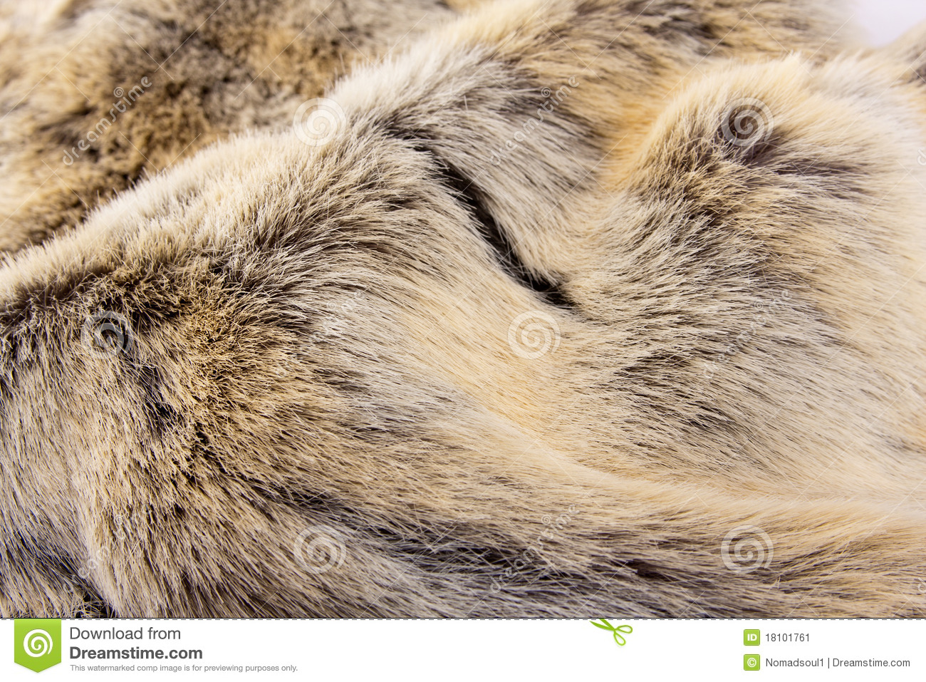 Animal Fur Stock Image Image Of Textured Camouflage